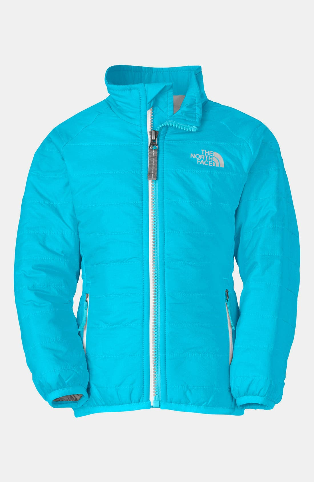 Main Image - The North Face 'Blaze' Jacket (Toddler)