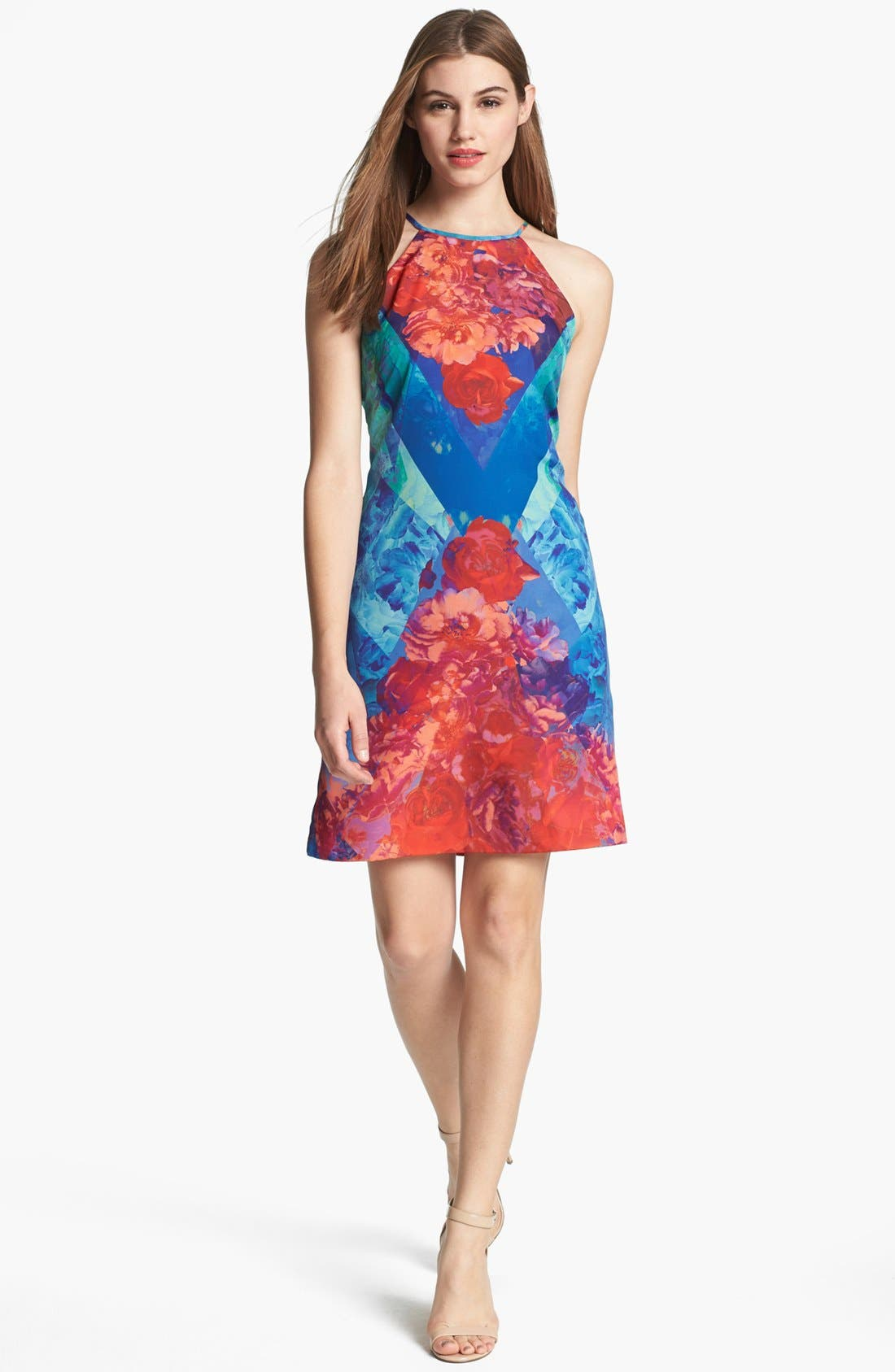 Alternate Image 1 Selected - Ivy & Blu Print A-Line Dress