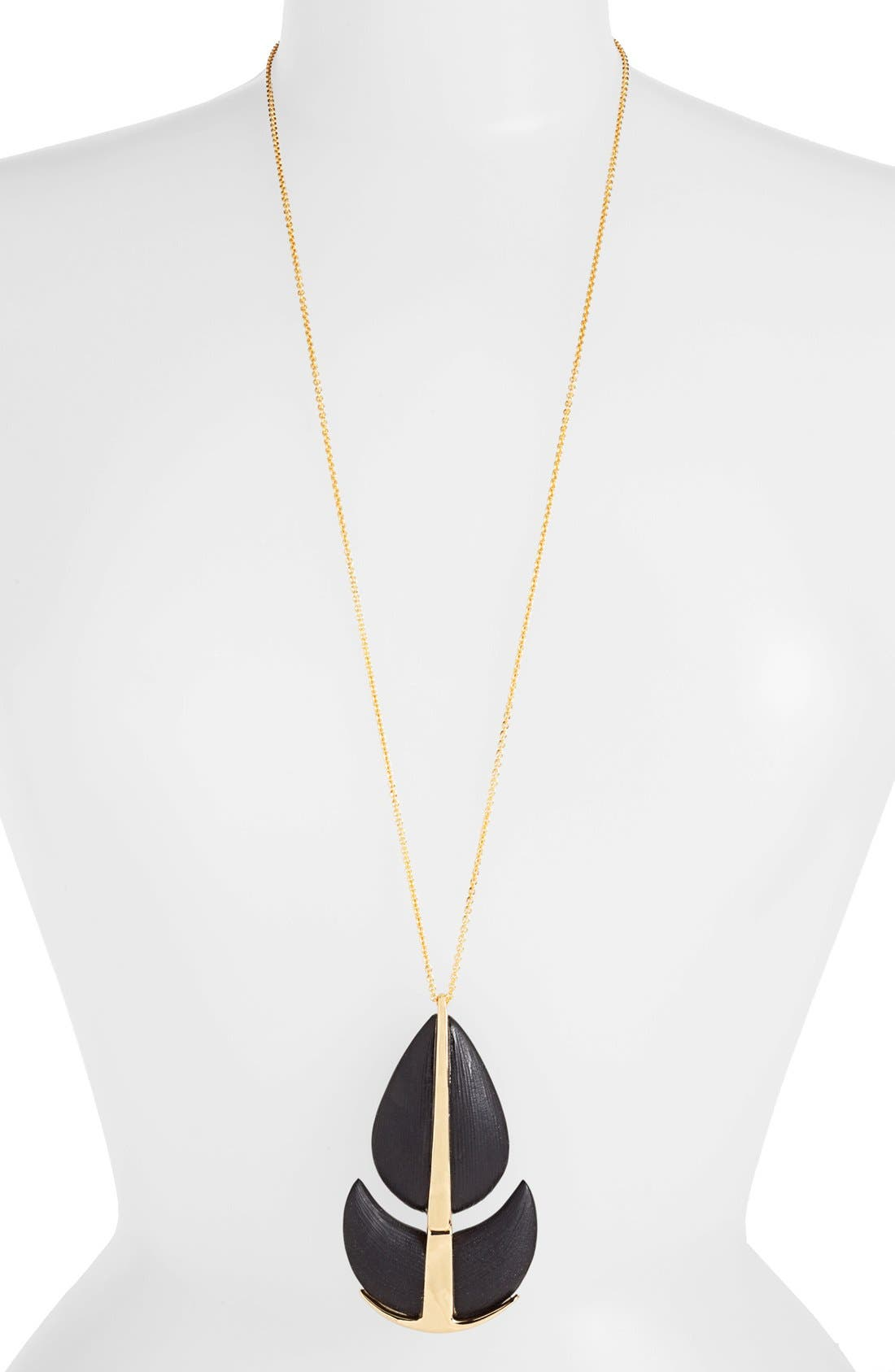 Alternate Image 1 Selected - Alexis Bittar 'Lucite® - Neo Bohemian' Long Pendant Necklace