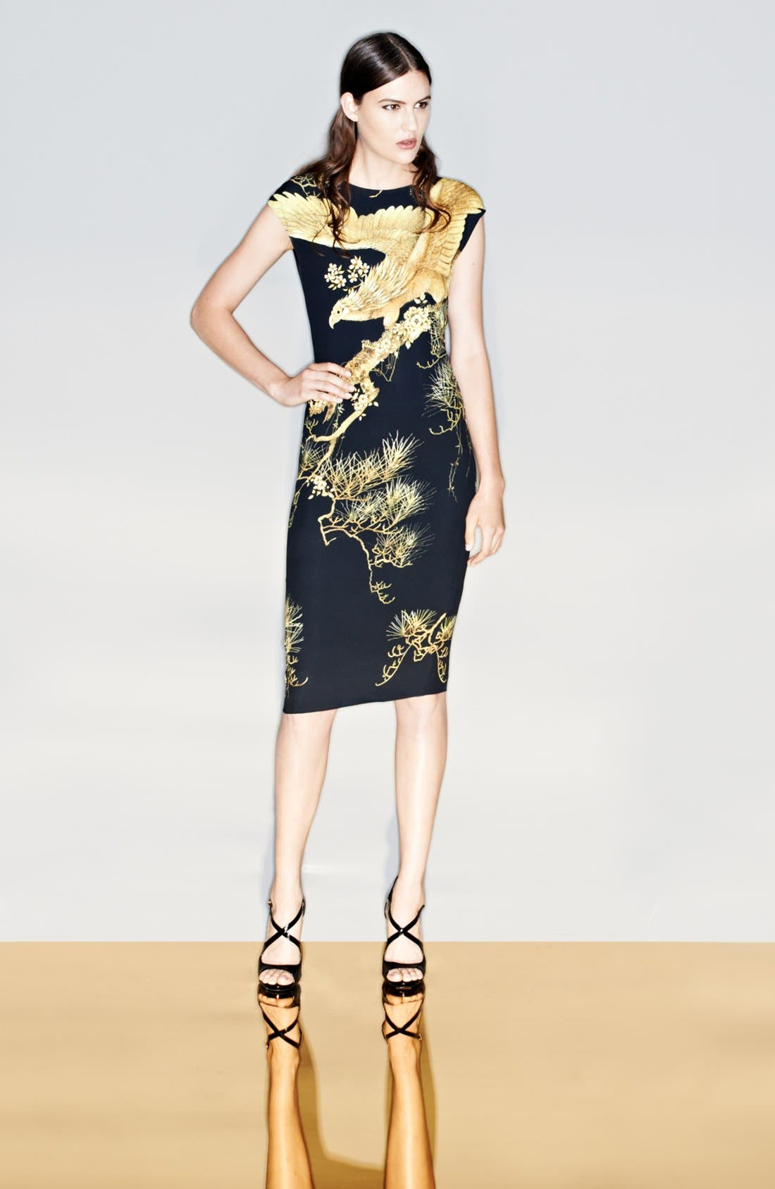 Alternate Image 1 Selected - Roberto Cavalli Dress & Accessories