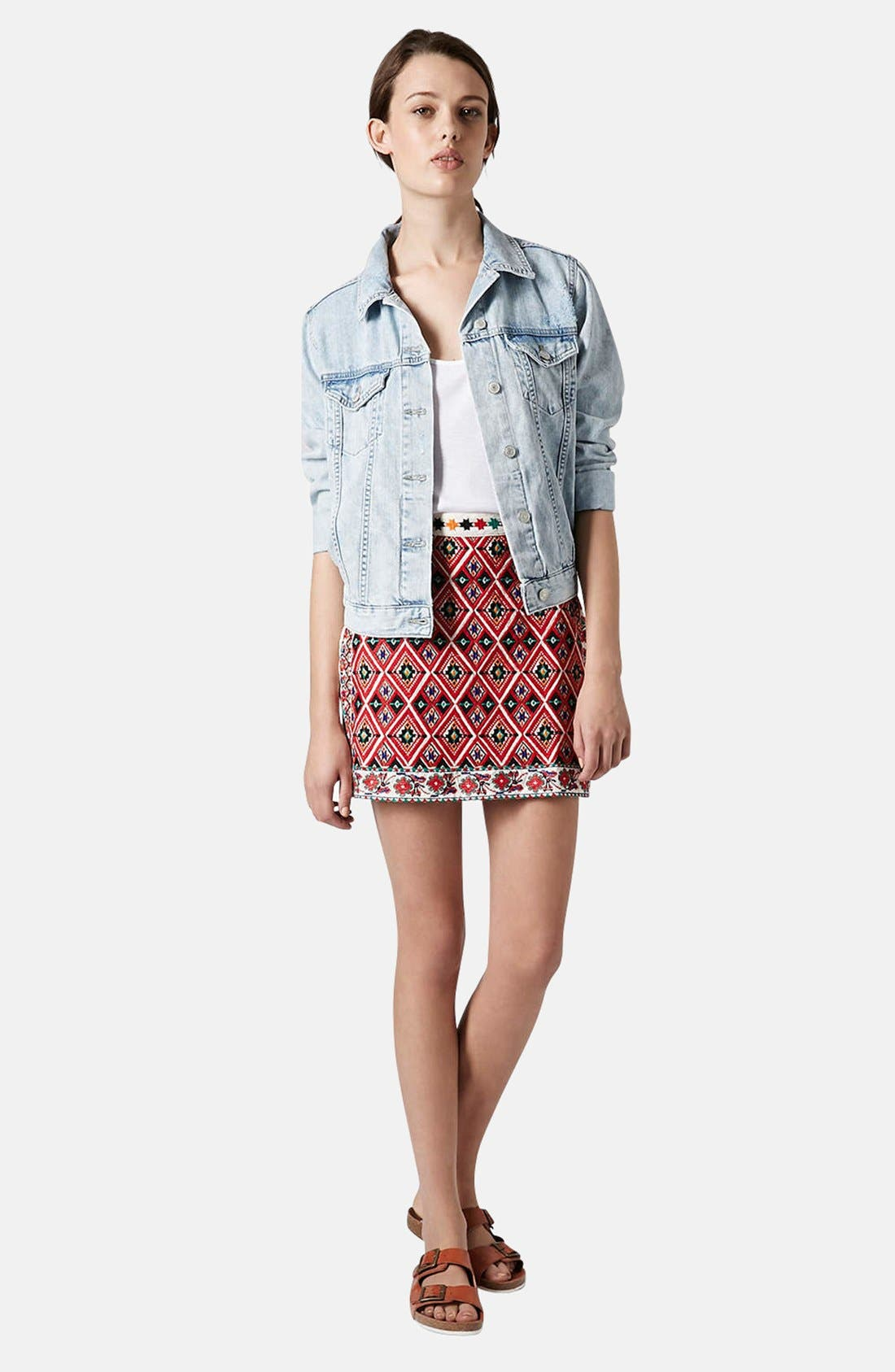 Alternate Image 5  - Topshop Embroidered A-Line Skirt