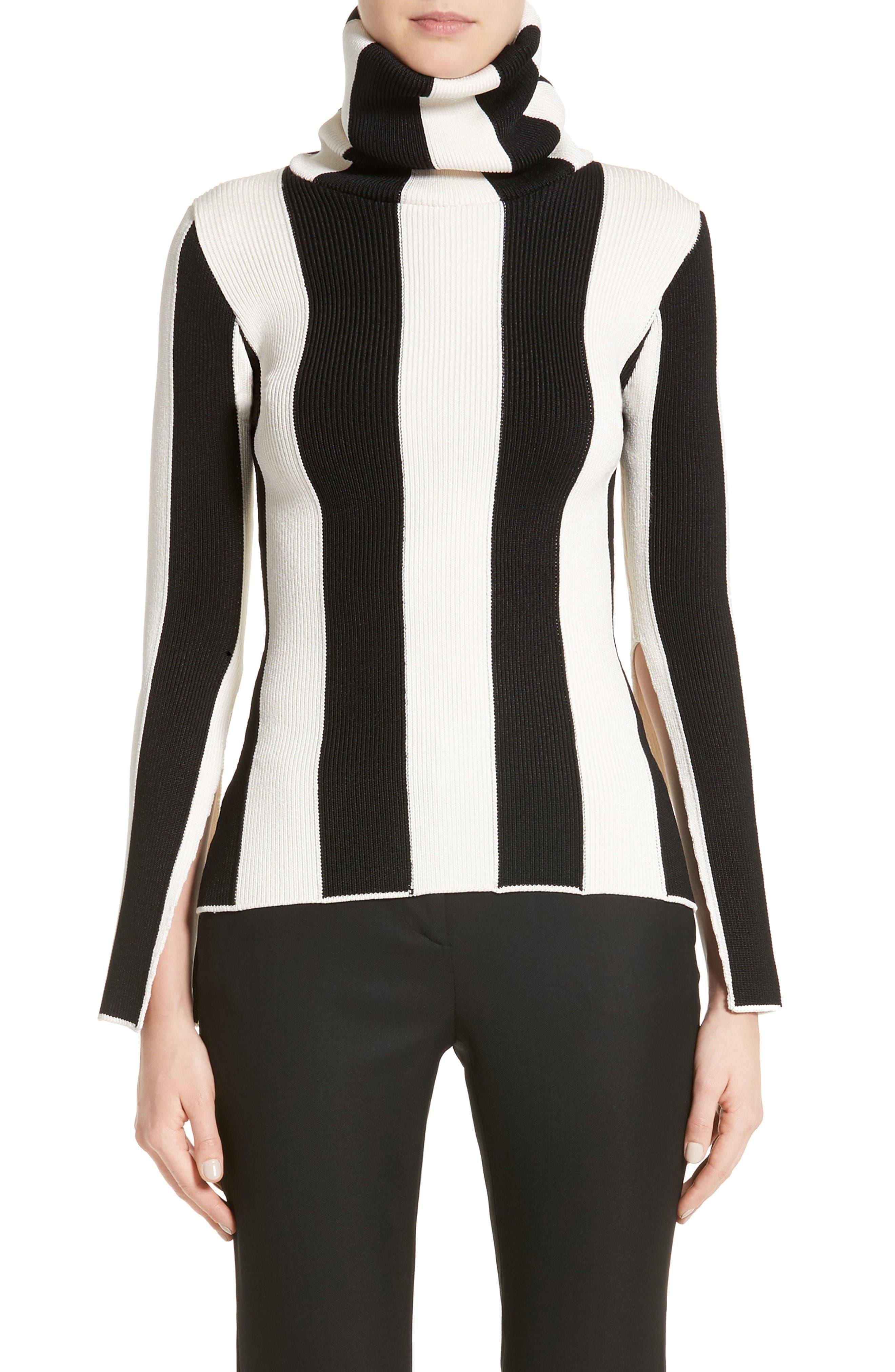 Stripe Turtleneck,                         Main,                         color, Black/ White