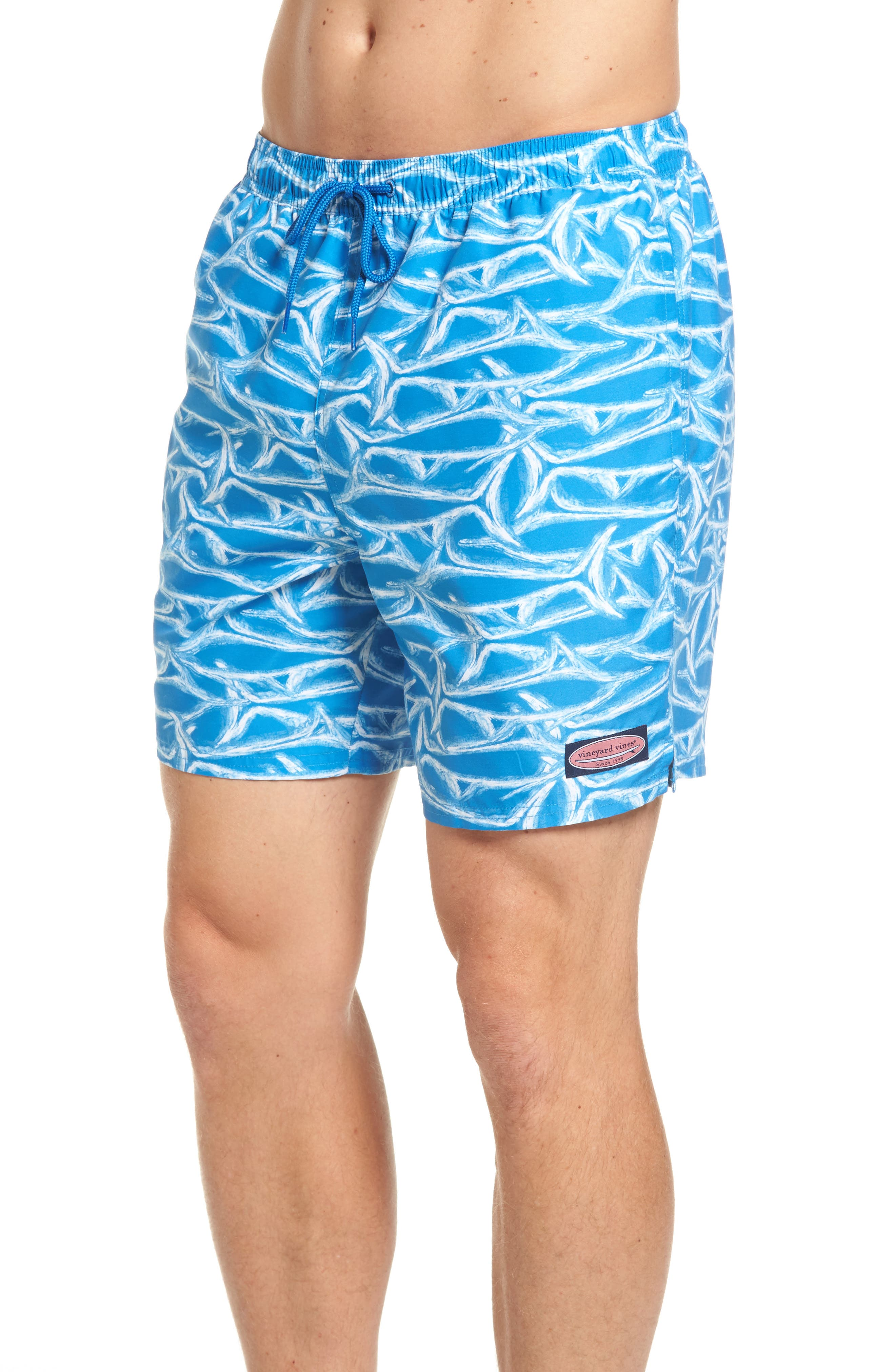 Brushed Marlin Chappy Swim Trunks,                             Alternate thumbnail 3, color,                             Hull Blue