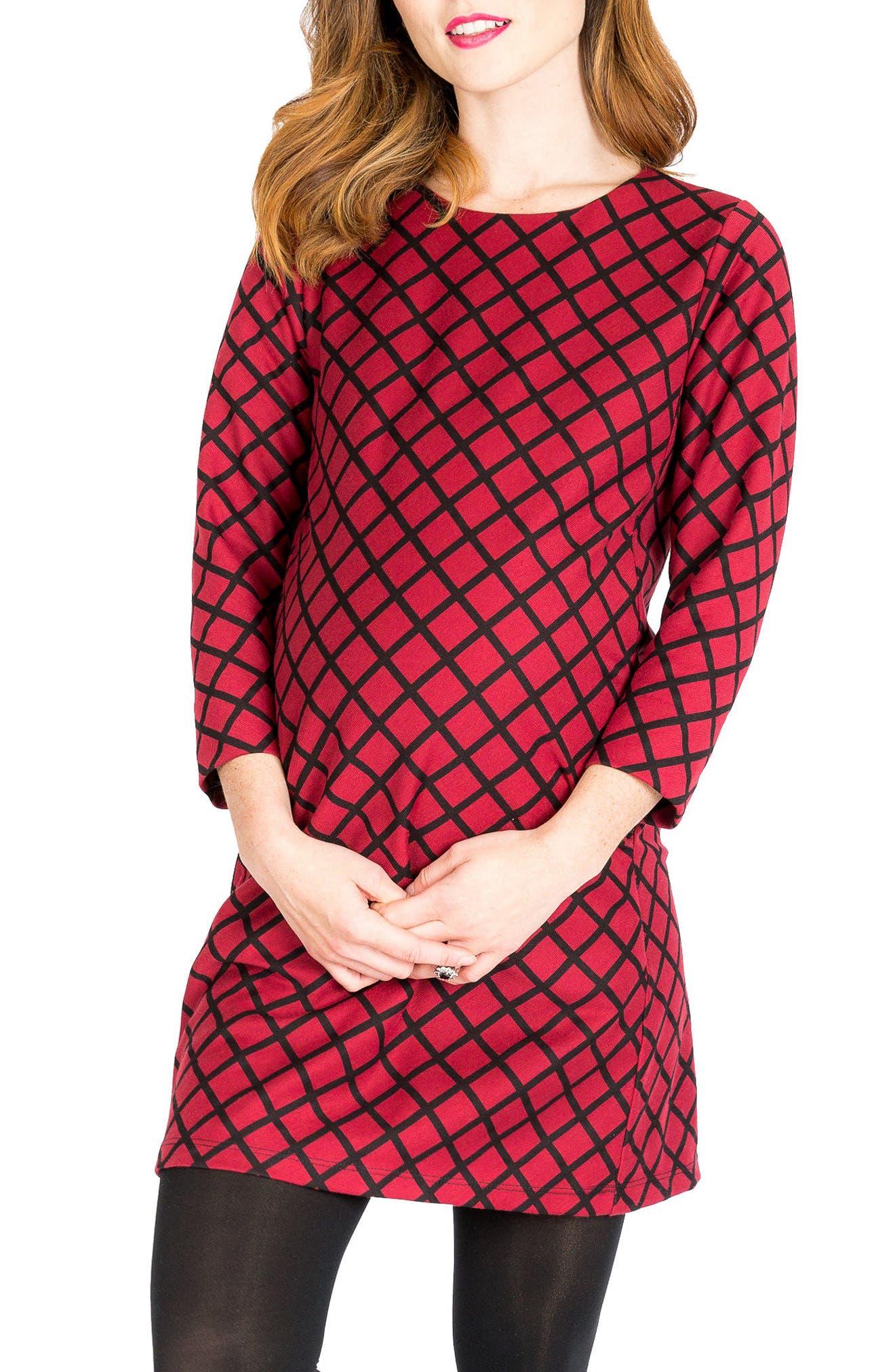 Alternate Image 1 Selected - Nom Maternity Charlotte Maternity Tunic