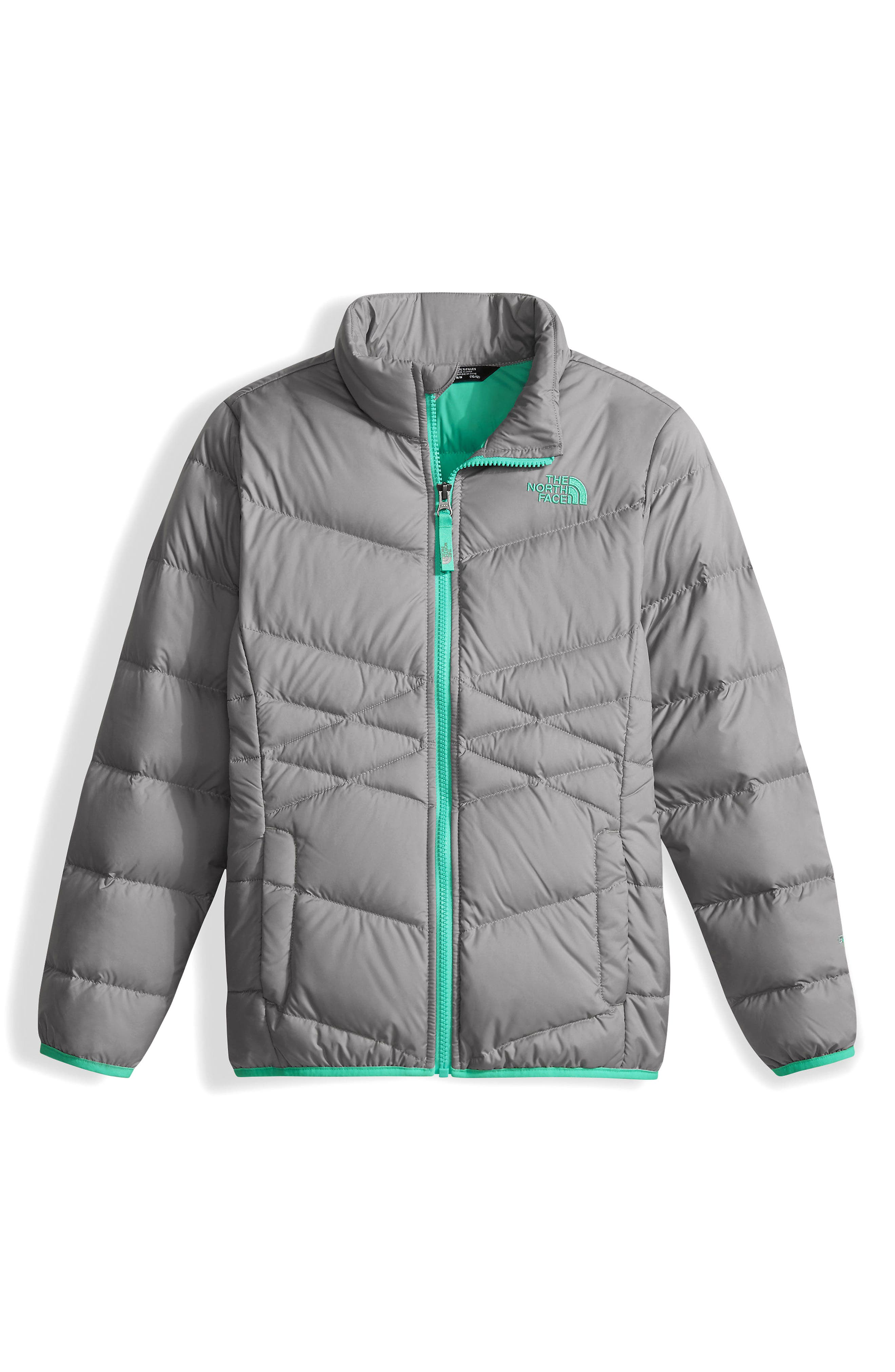 Andes Water Repellent Down Jacket,                         Main,                         color, Metallic Silver