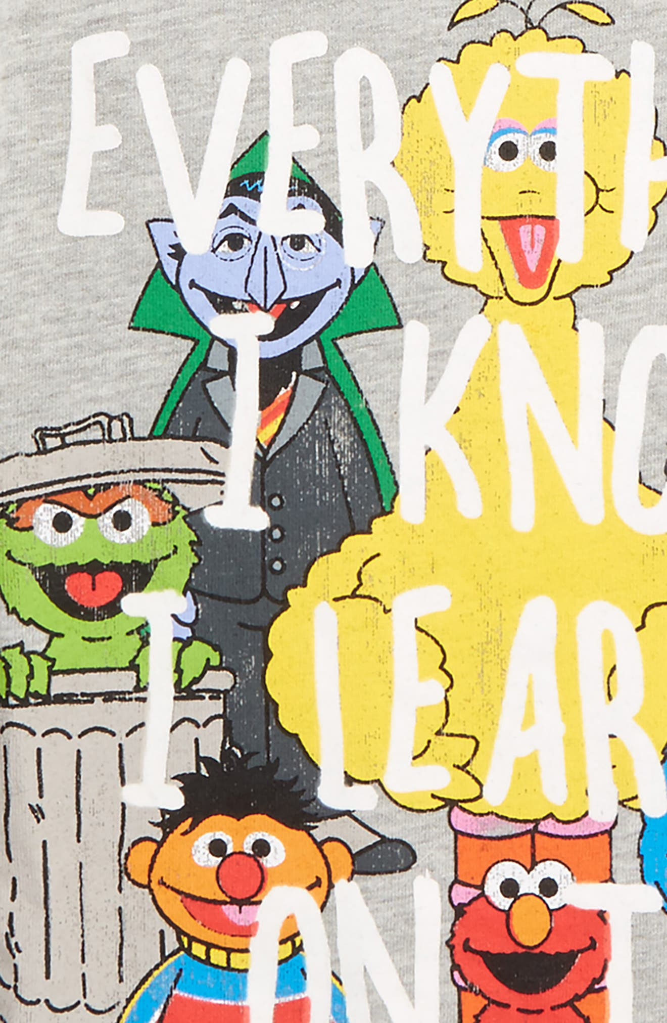 x Sesame Street - Everything I Know T-Shirt,                             Alternate thumbnail 2, color,                             Charcoal