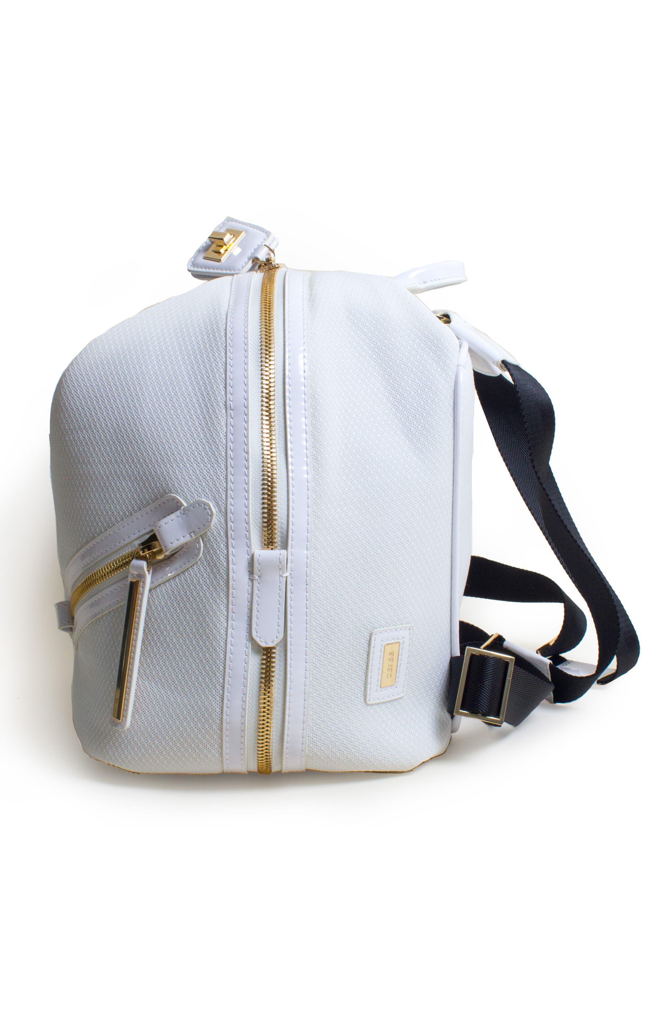 Alternate Image 4  - Caraa The Dance Bag
