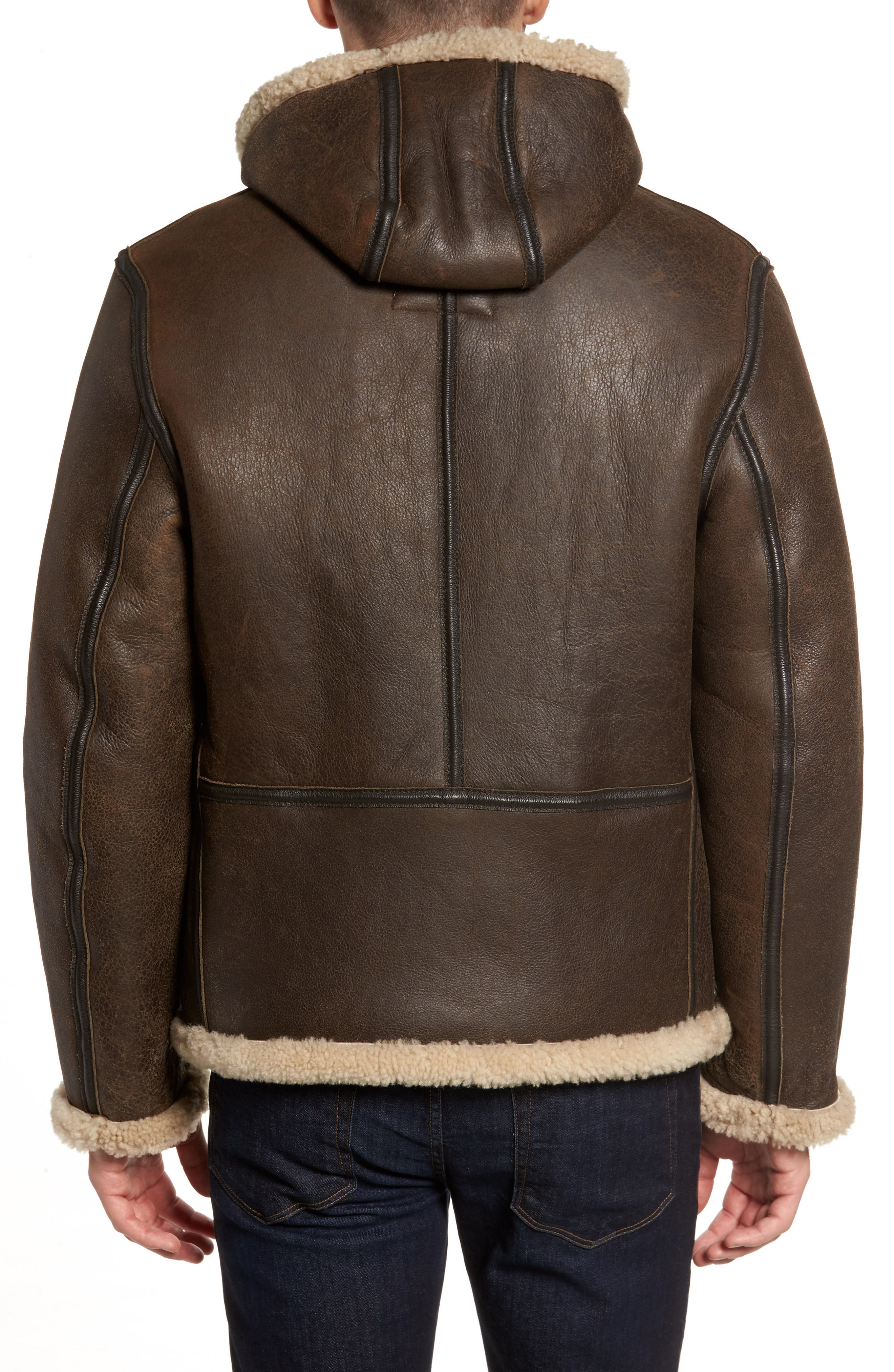 Genuine Shearling Vintage B-6 Hooded Bomber Jacket,                             Alternate thumbnail 2, color,                             Brown