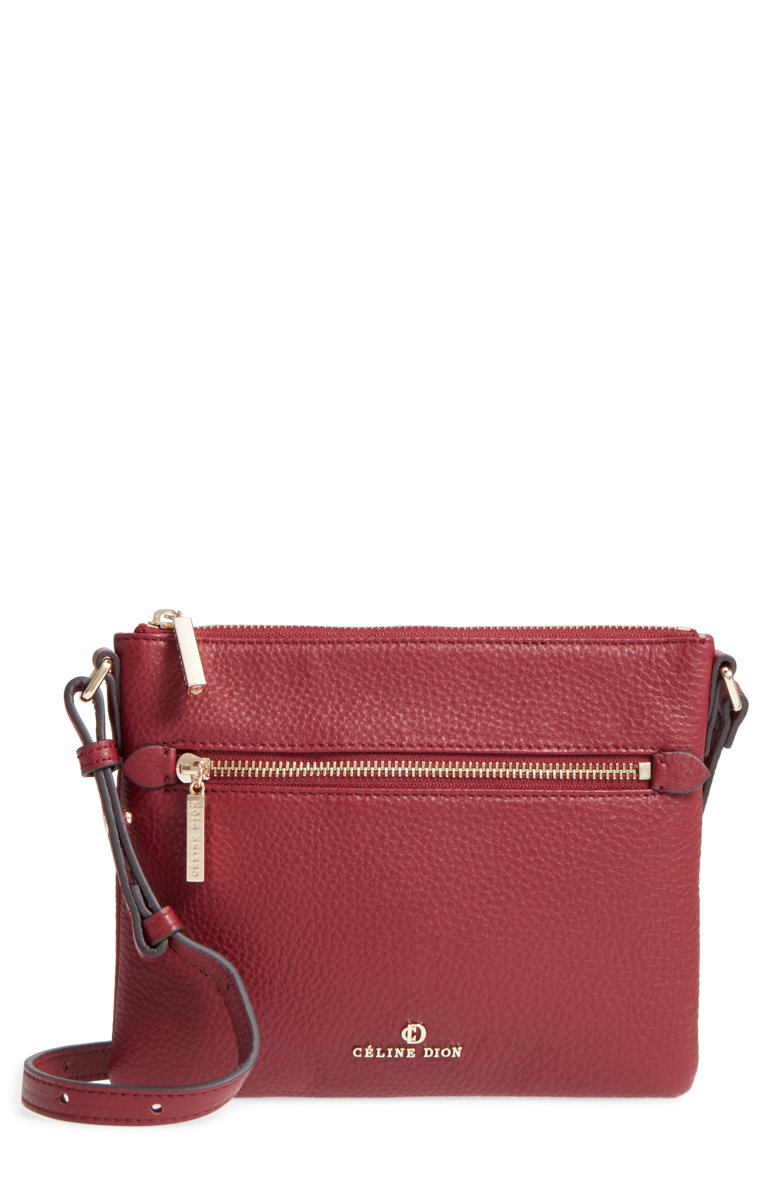 Alternate Image 1 Selected - Céline Dion Adagio Leather Crossbody Bag