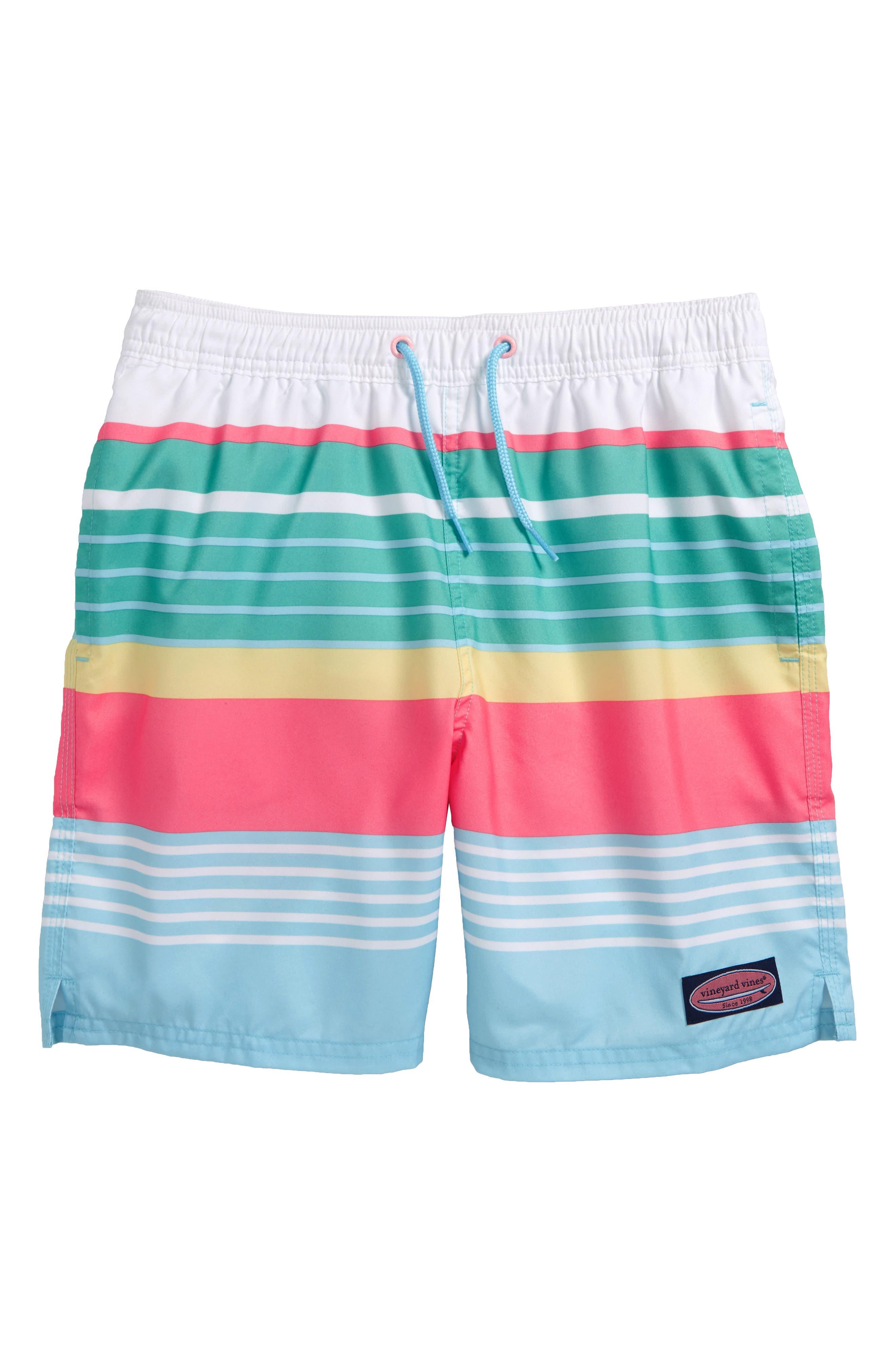 Chappy Boca Bay Stripe Swim Trunks,                         Main,                         color, Sea Splash