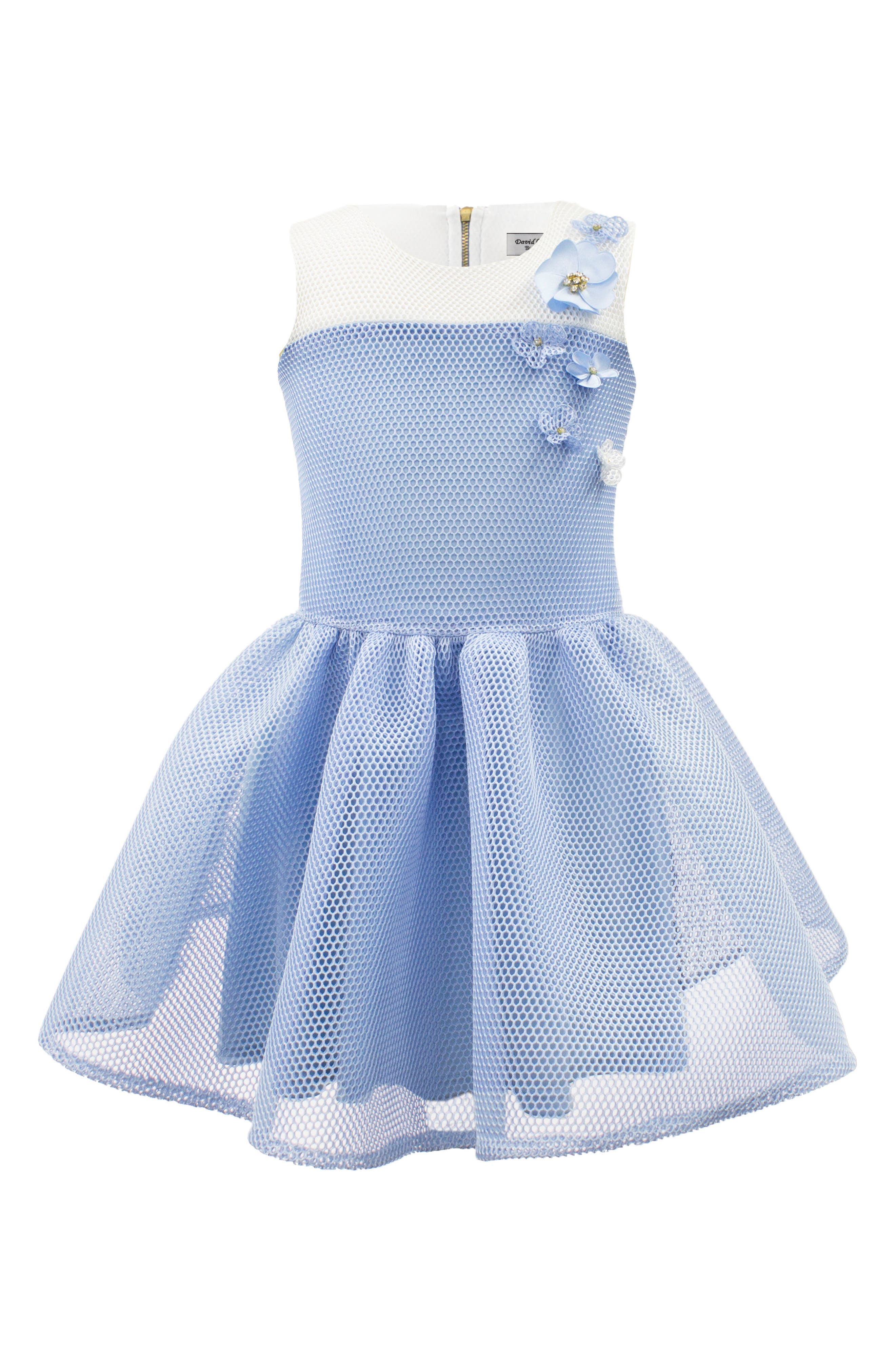 Mesh Fit & Flare Dress,                         Main,                         color, Blue/ Ivory
