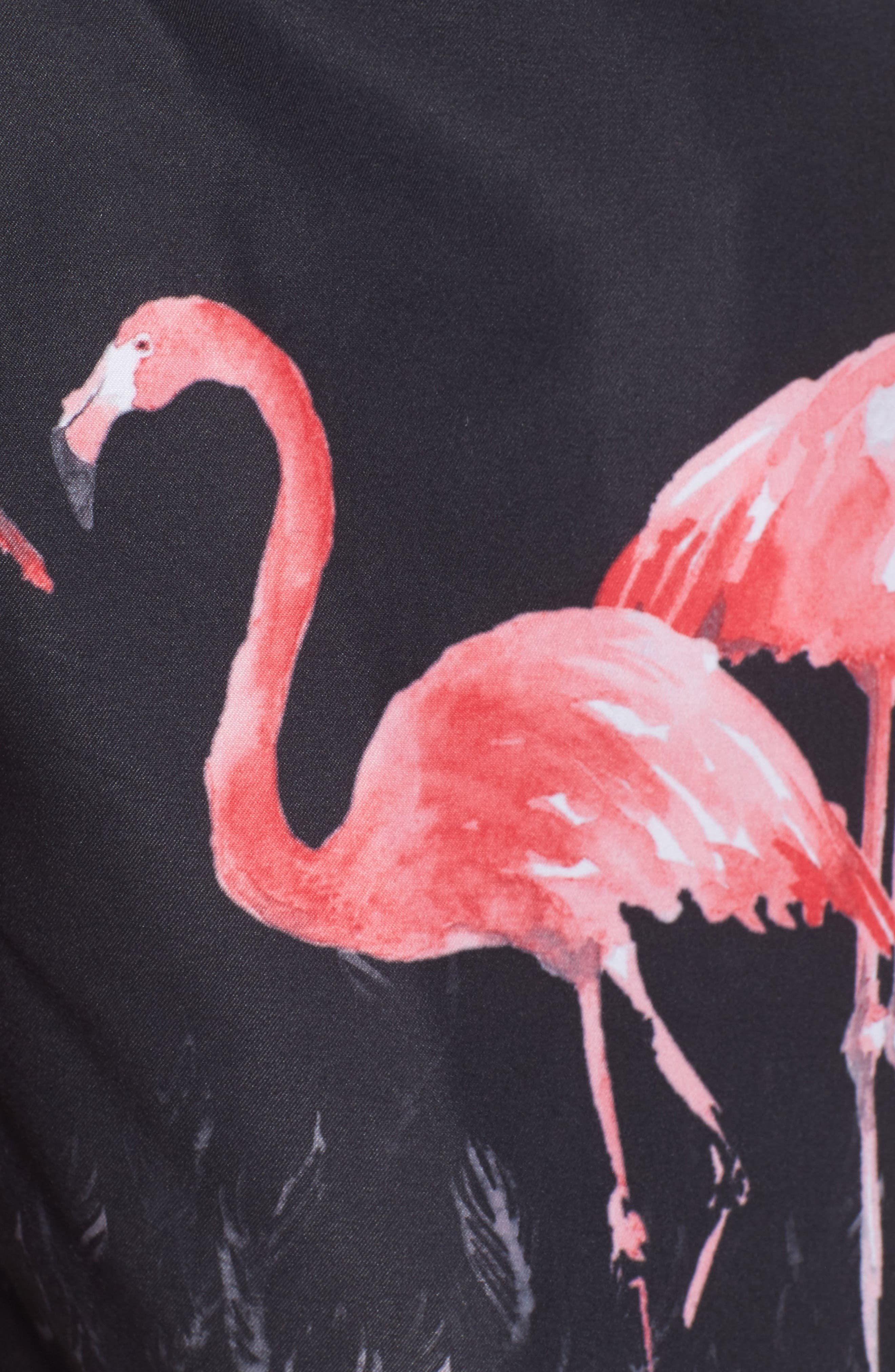 San O Flamingo Print Swim Trunks,                             Alternate thumbnail 5, color,                             Black Multi