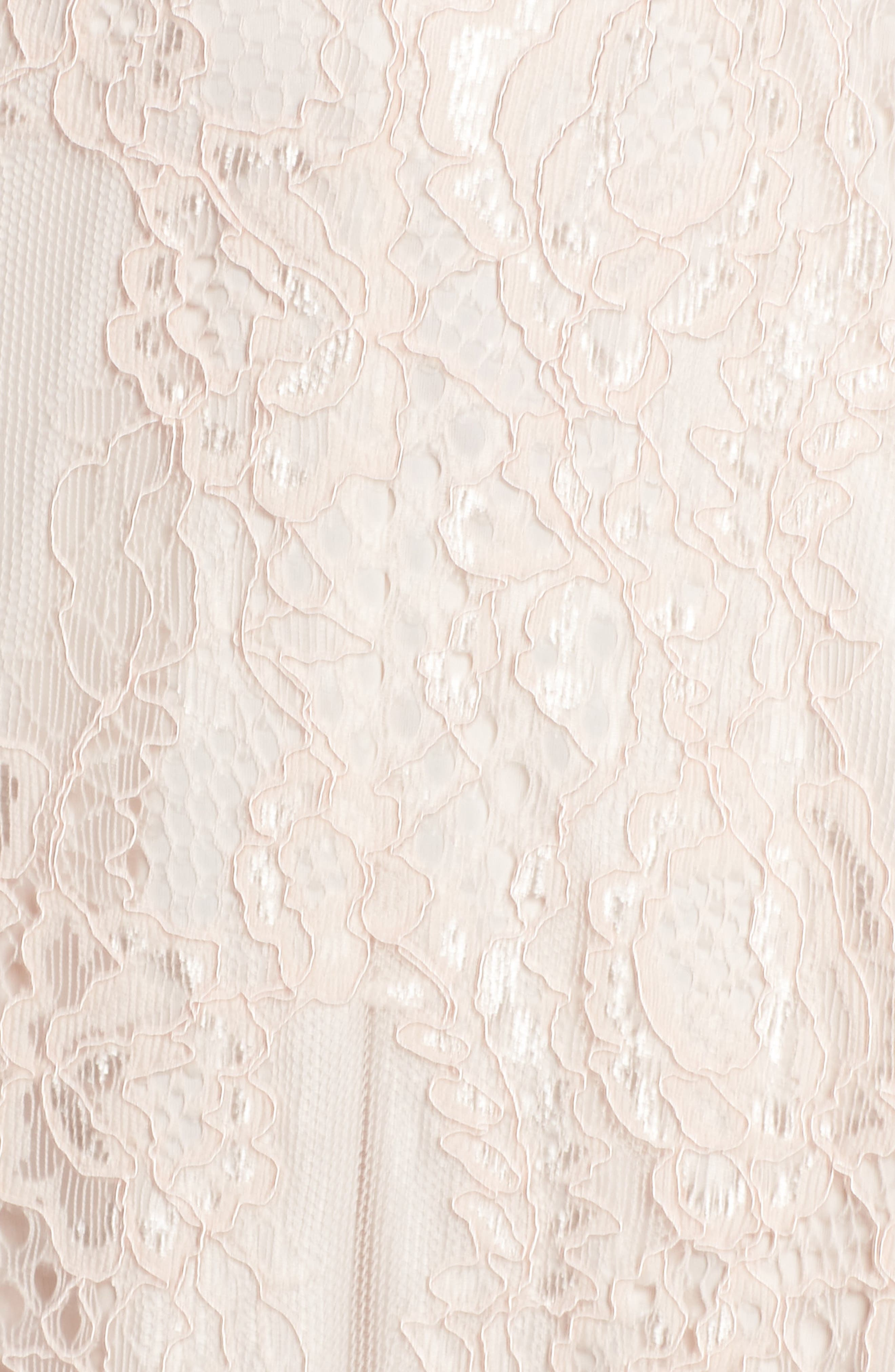Alternate Image 5  - Adrianna Papell Rose Lace Fit & Flare Dress