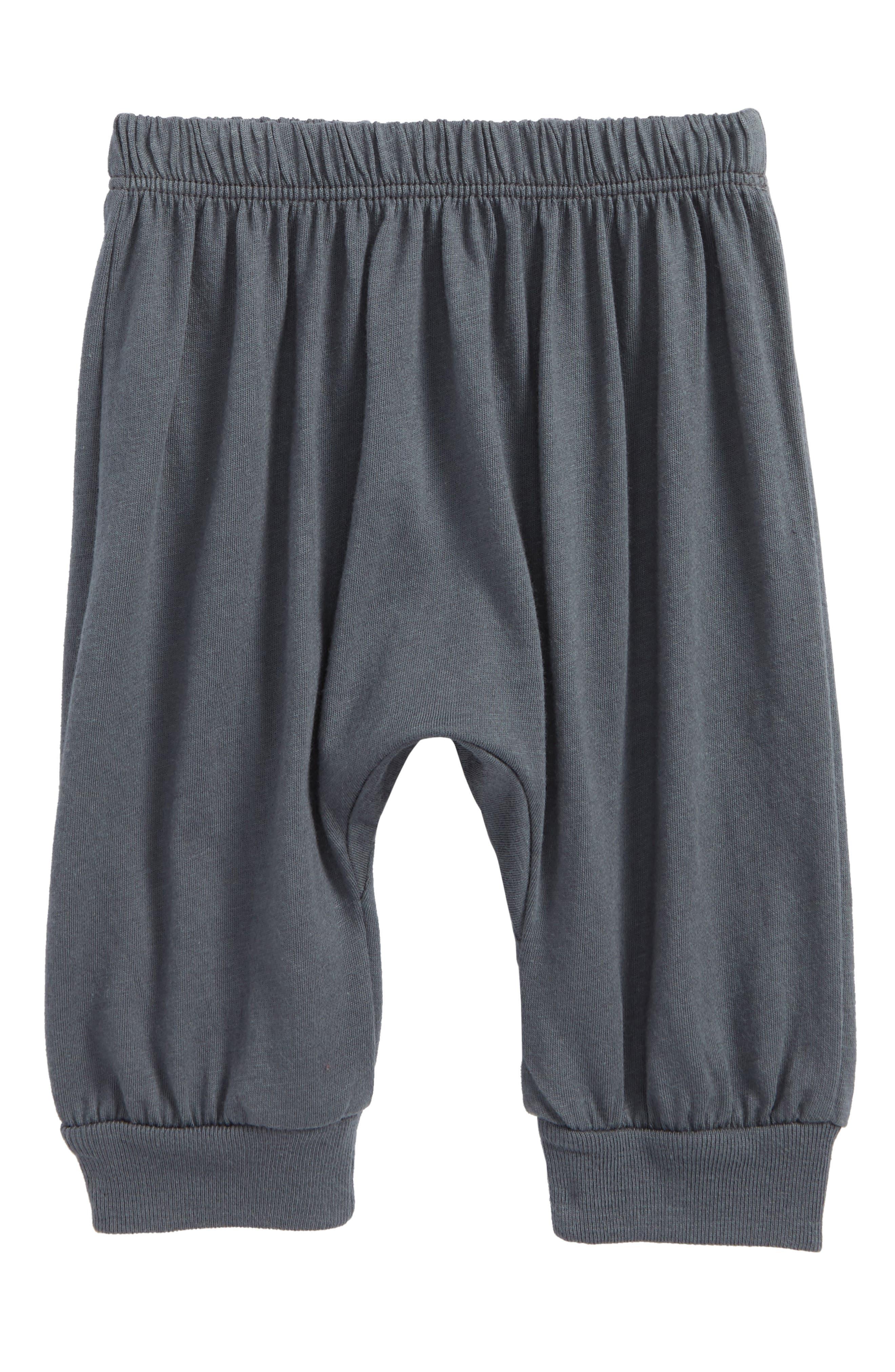 Peek Little Peanut Happy Pants,                             Main thumbnail 1, color,                             Slate