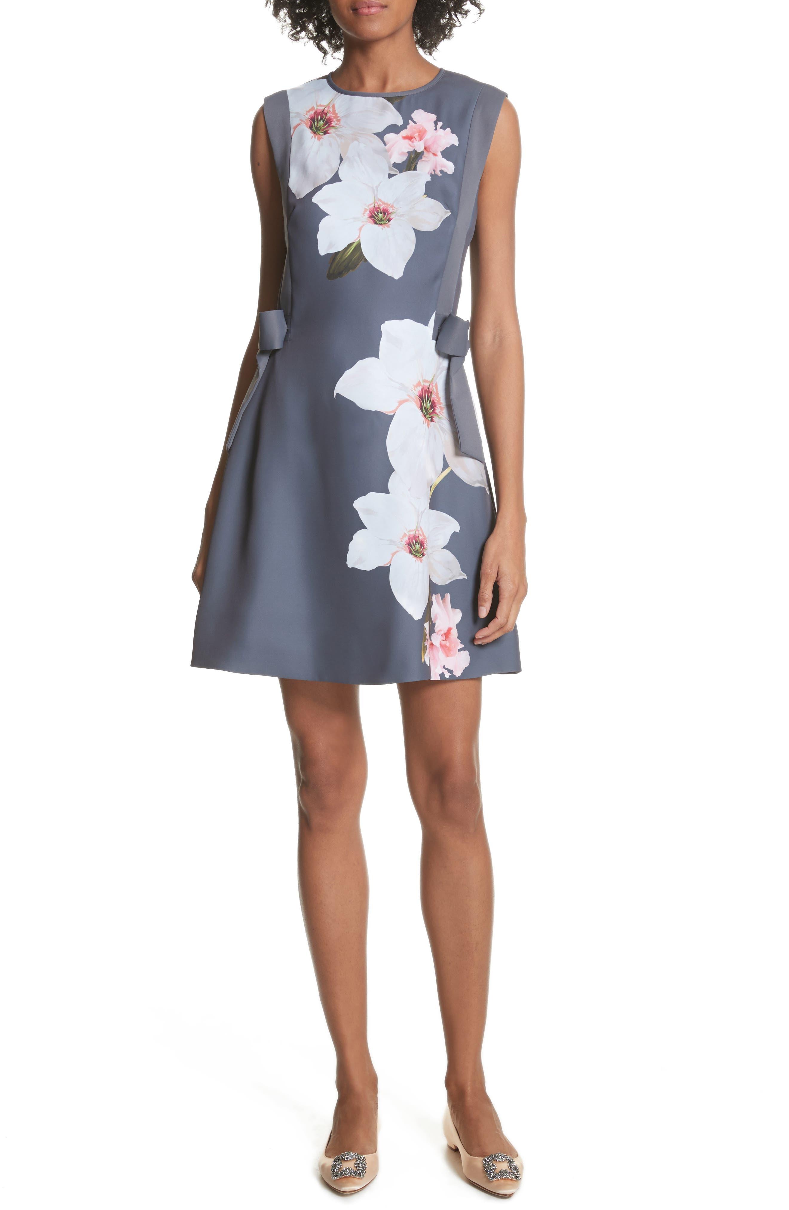 Main Image - Ted Baker London Chatsworrth A-Line Dress