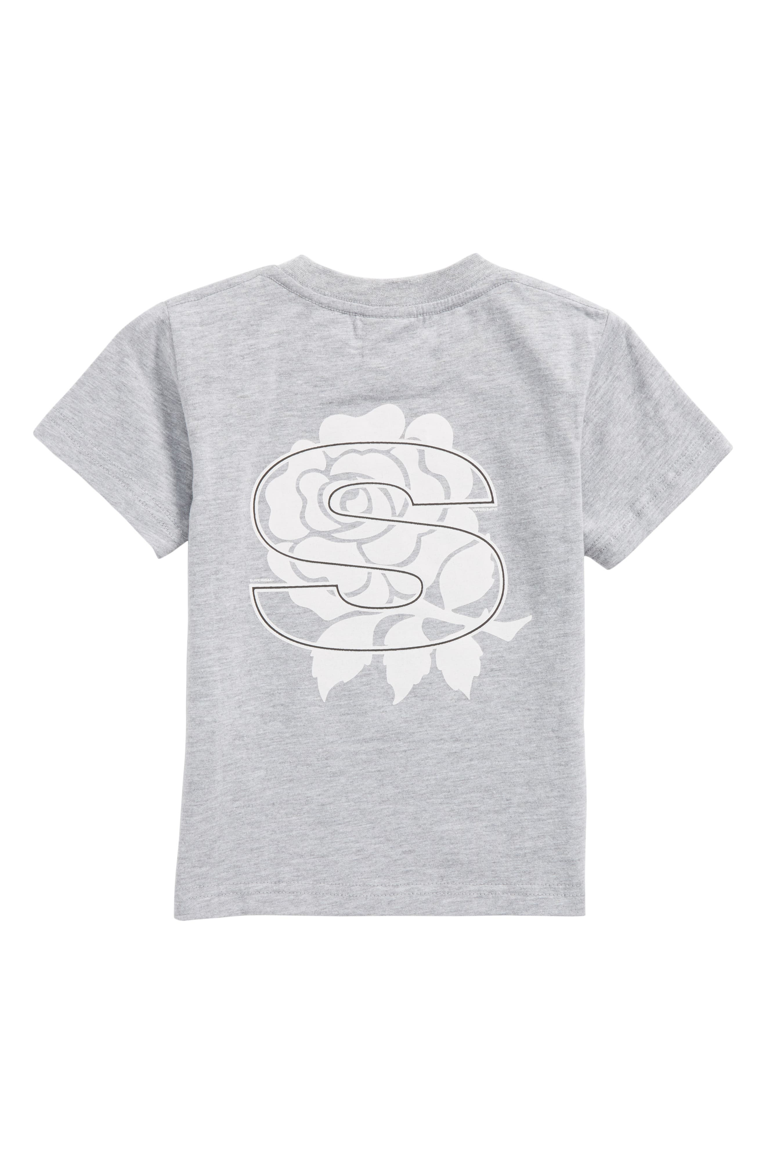 Rose Vision T-Shirt,                             Alternate thumbnail 2, color,                             Heather Grey