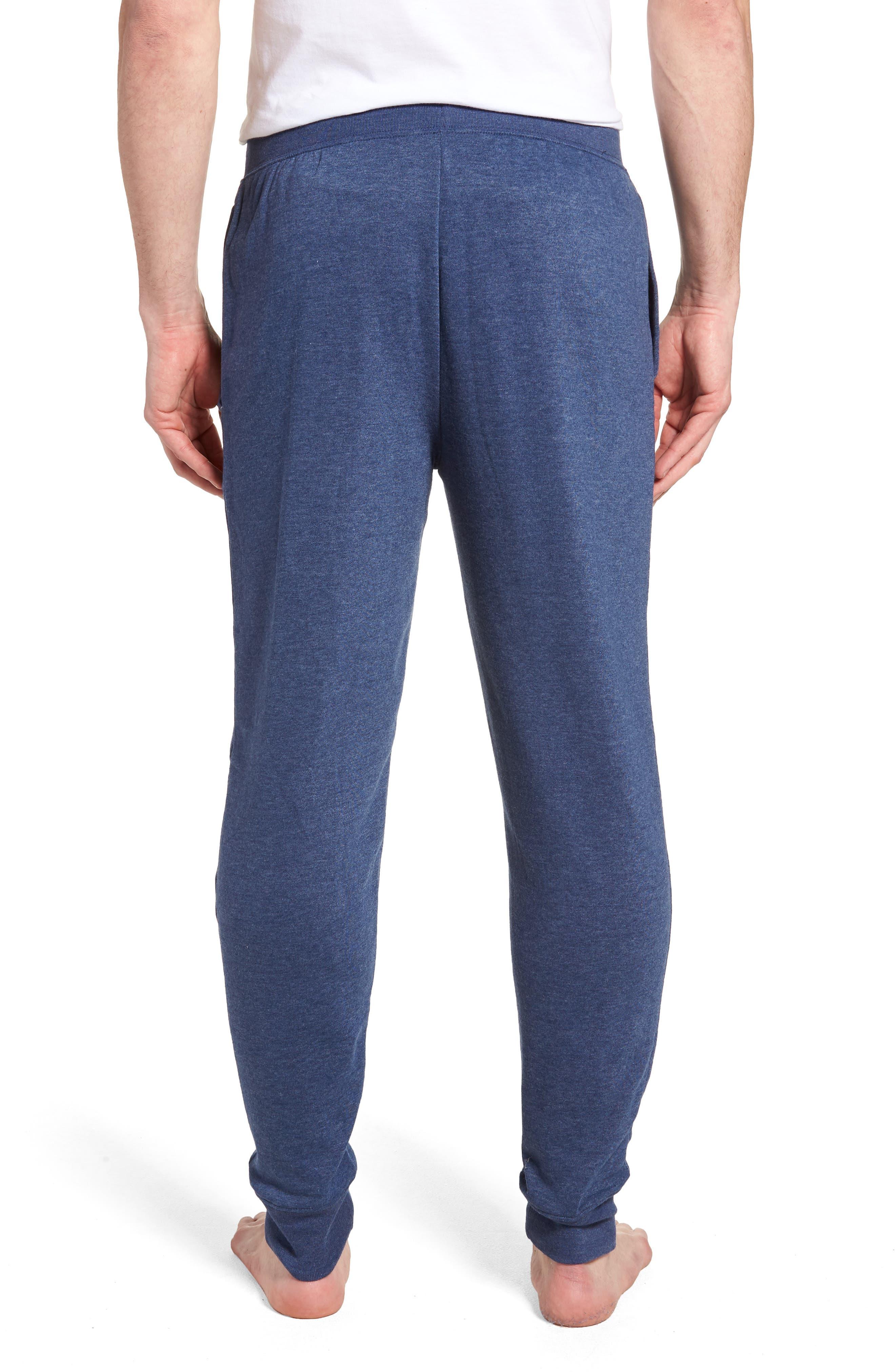 Brushed Jersey Cotton Blend Jogger Pants,                             Alternate thumbnail 2, color,                             Blue