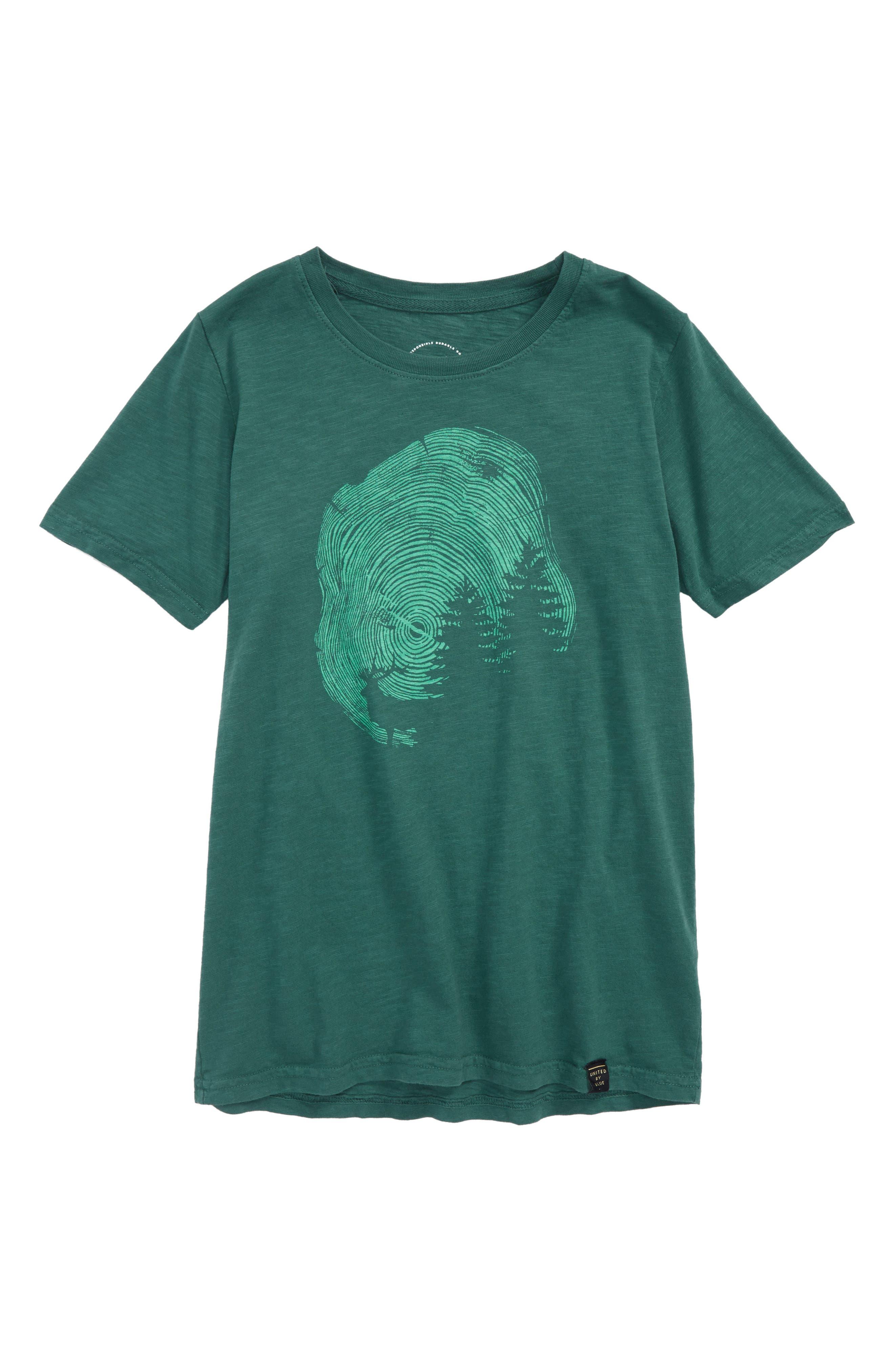 Gorham Organic Cotton T-Shirt,                         Main,                         color, Teal