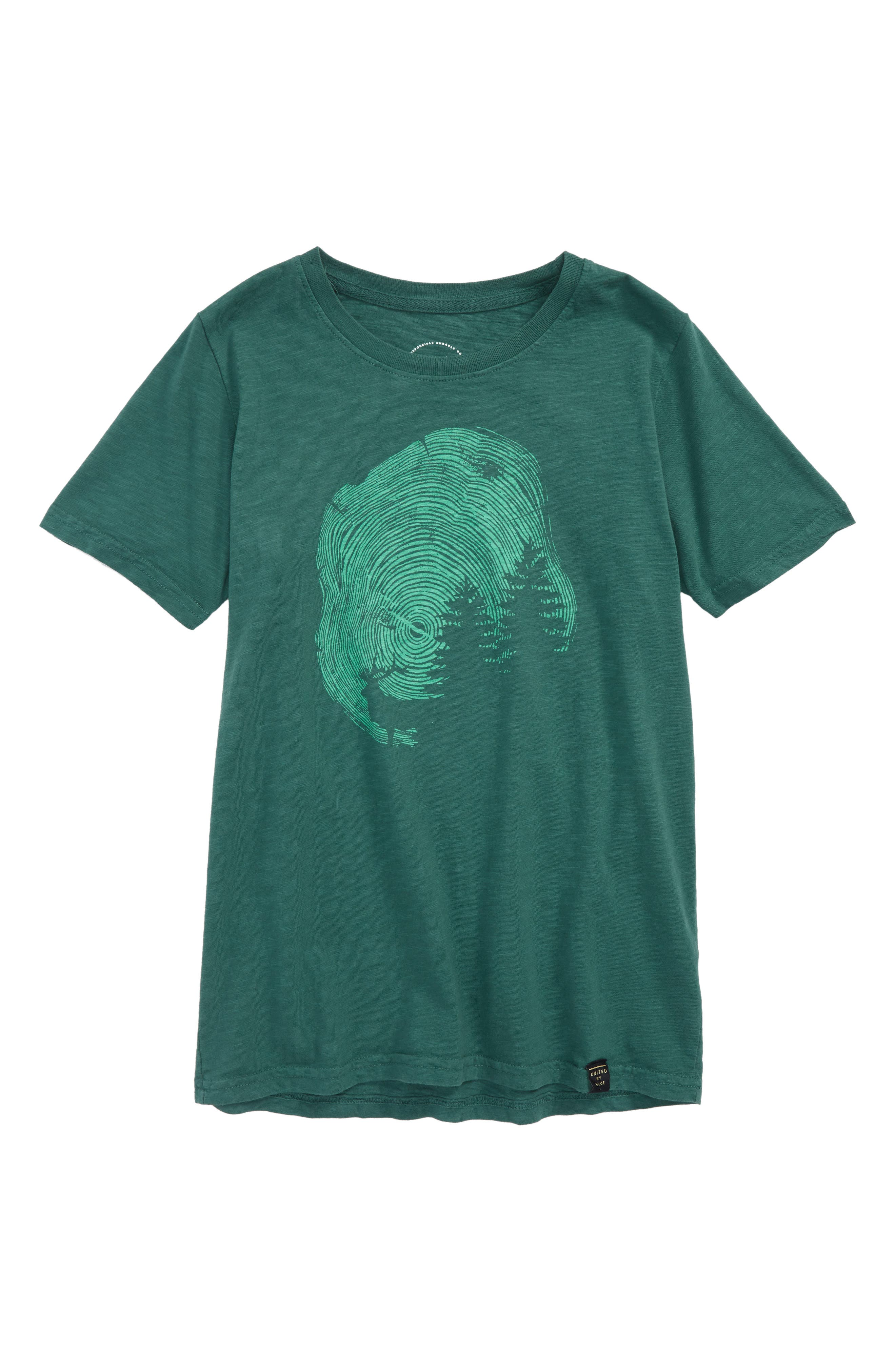 Gorham Organic Cotton T-Shirt,                         Main,                         color, Teal