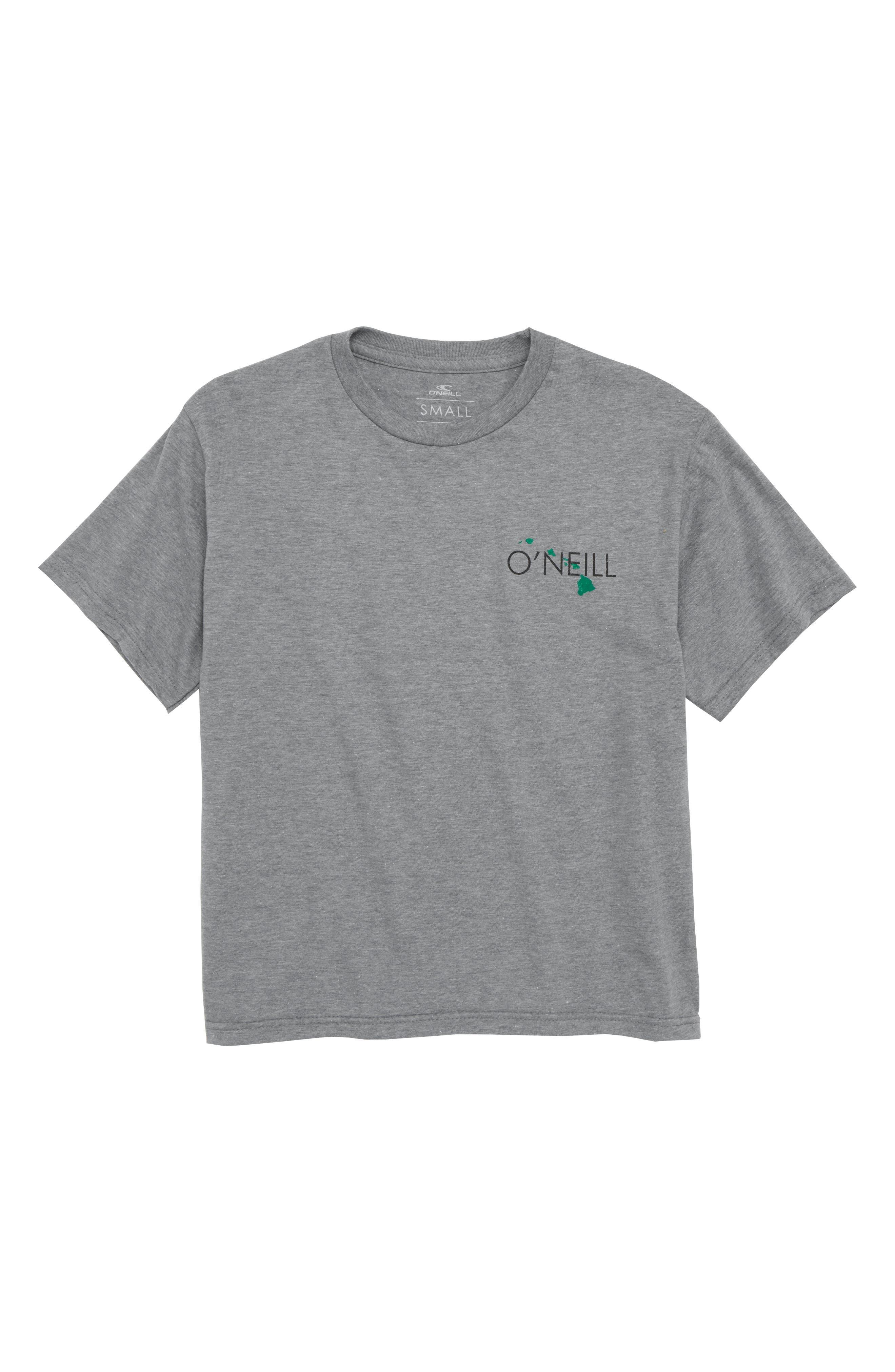 State of Aloha T-Shirt,                             Main thumbnail 1, color,                             Medium Heather Grey