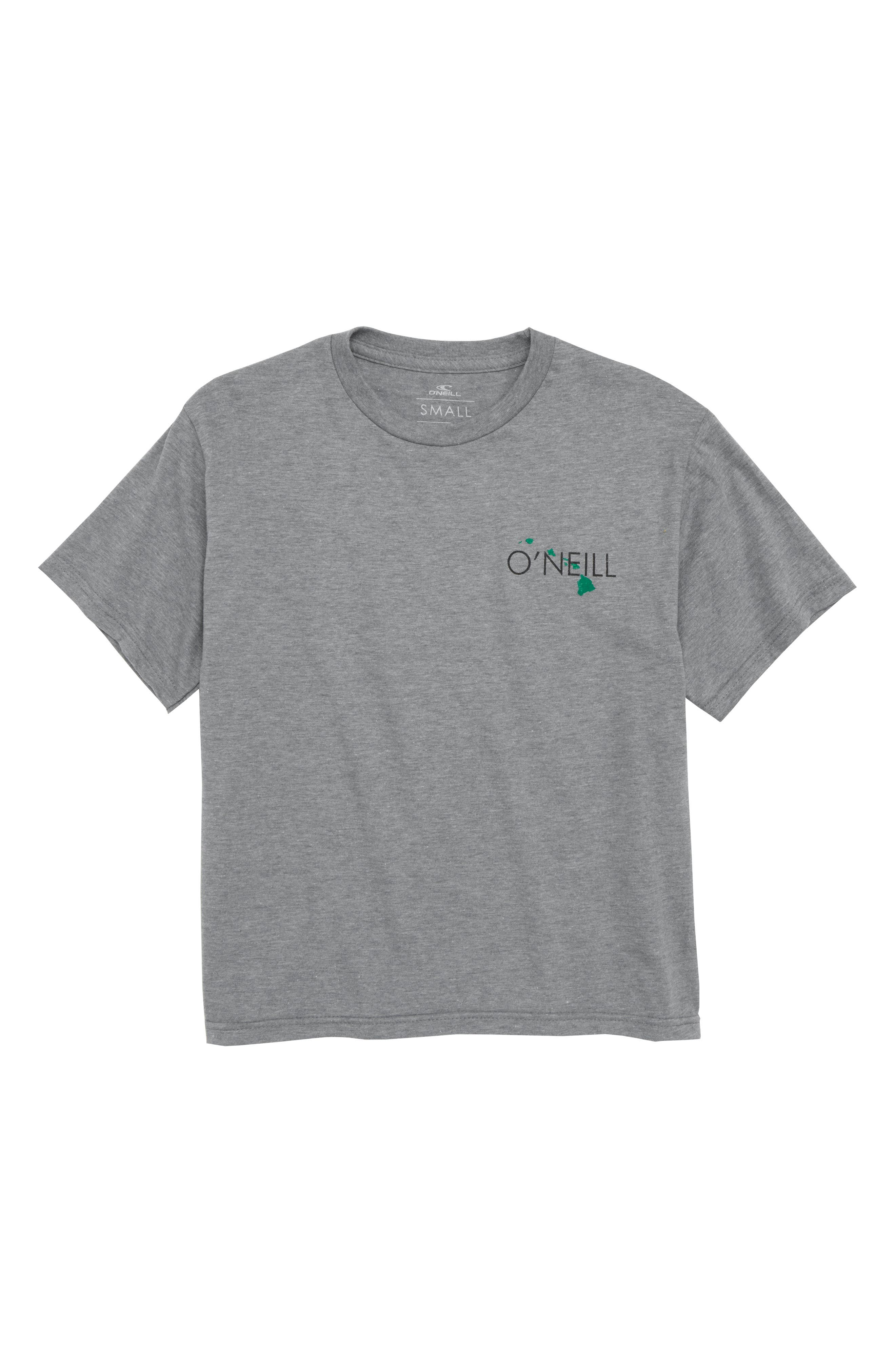 State of Aloha T-Shirt,                         Main,                         color, Medium Heather Grey