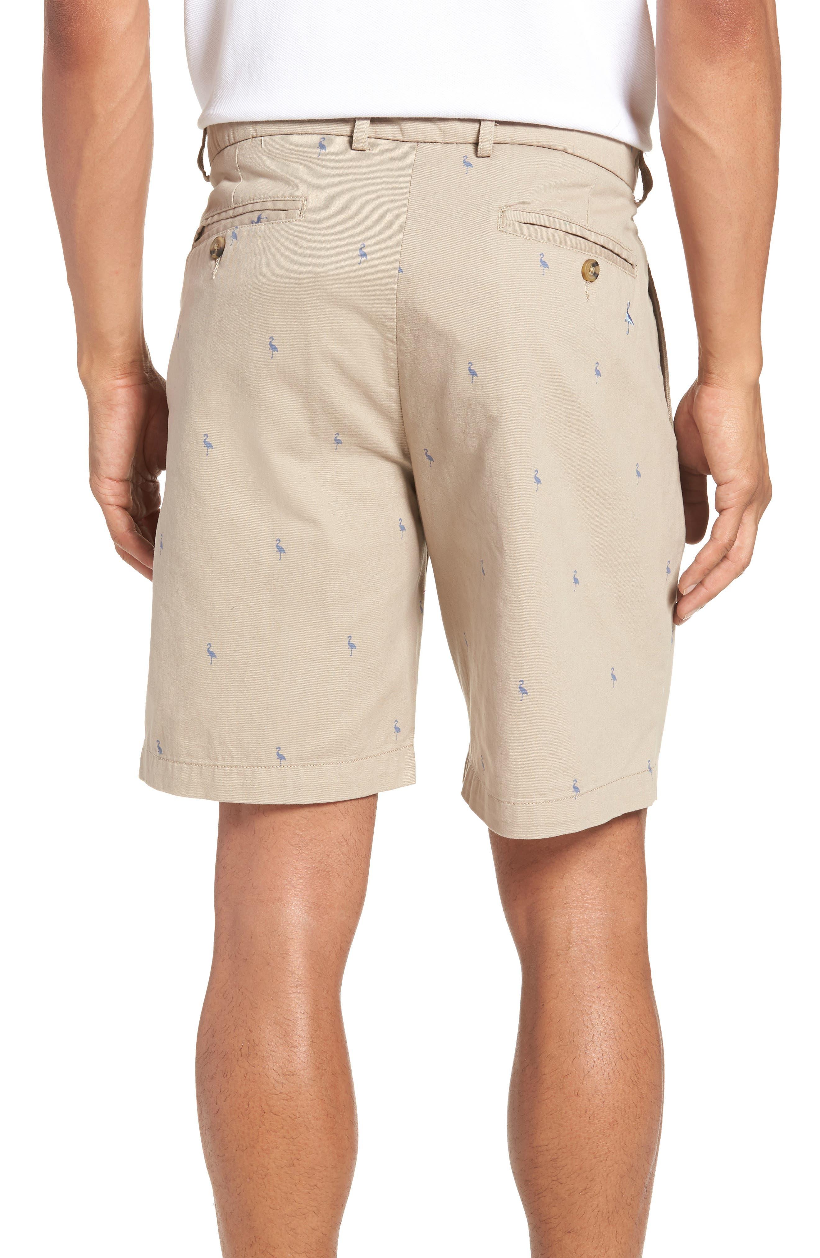 Baden Bird Regular Fit Chino Shorts,                             Alternate thumbnail 2, color,                             Dark Khaki