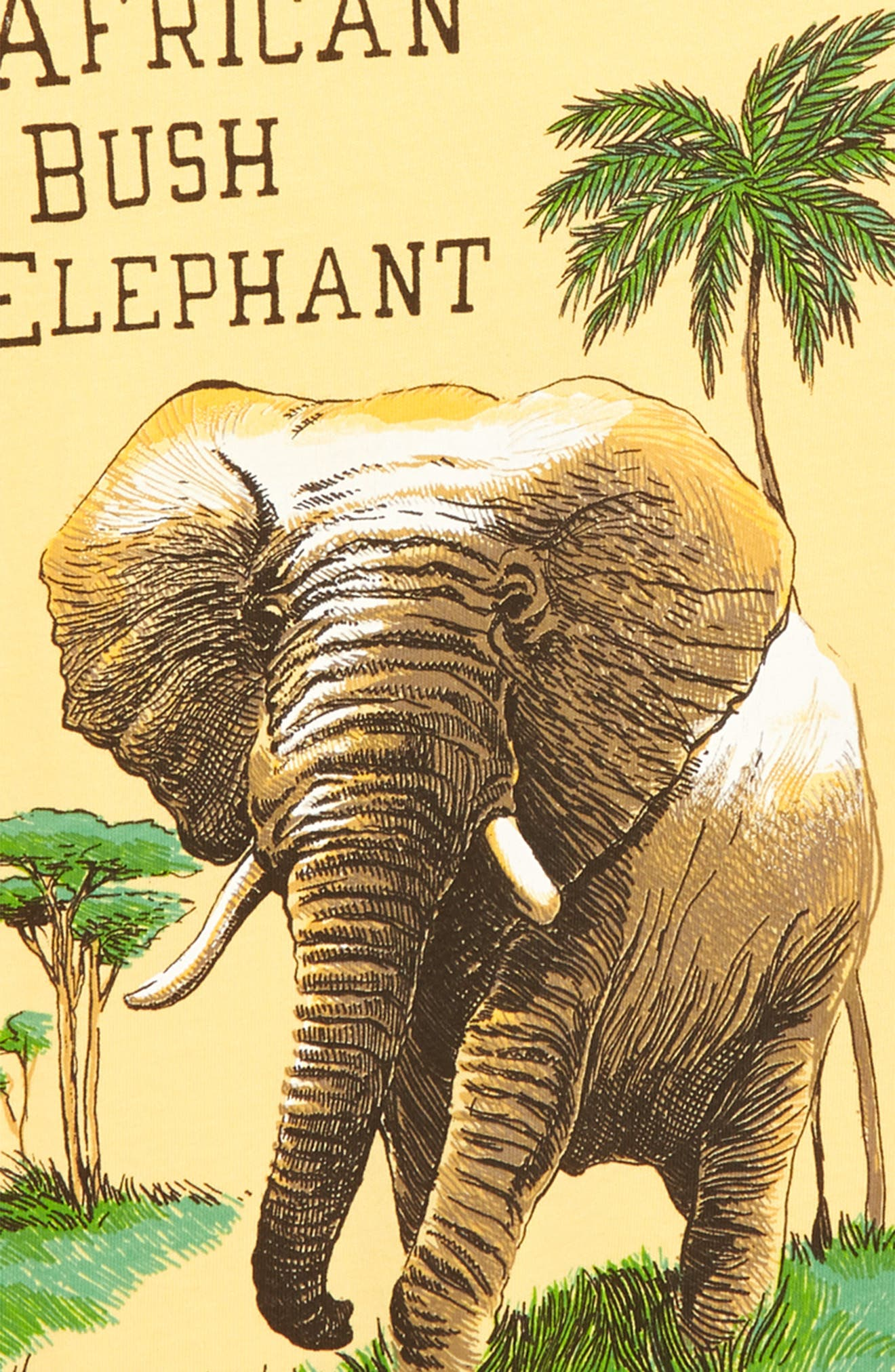 Elephant Graphic T-Shirt,                             Alternate thumbnail 3, color,                             Yellow