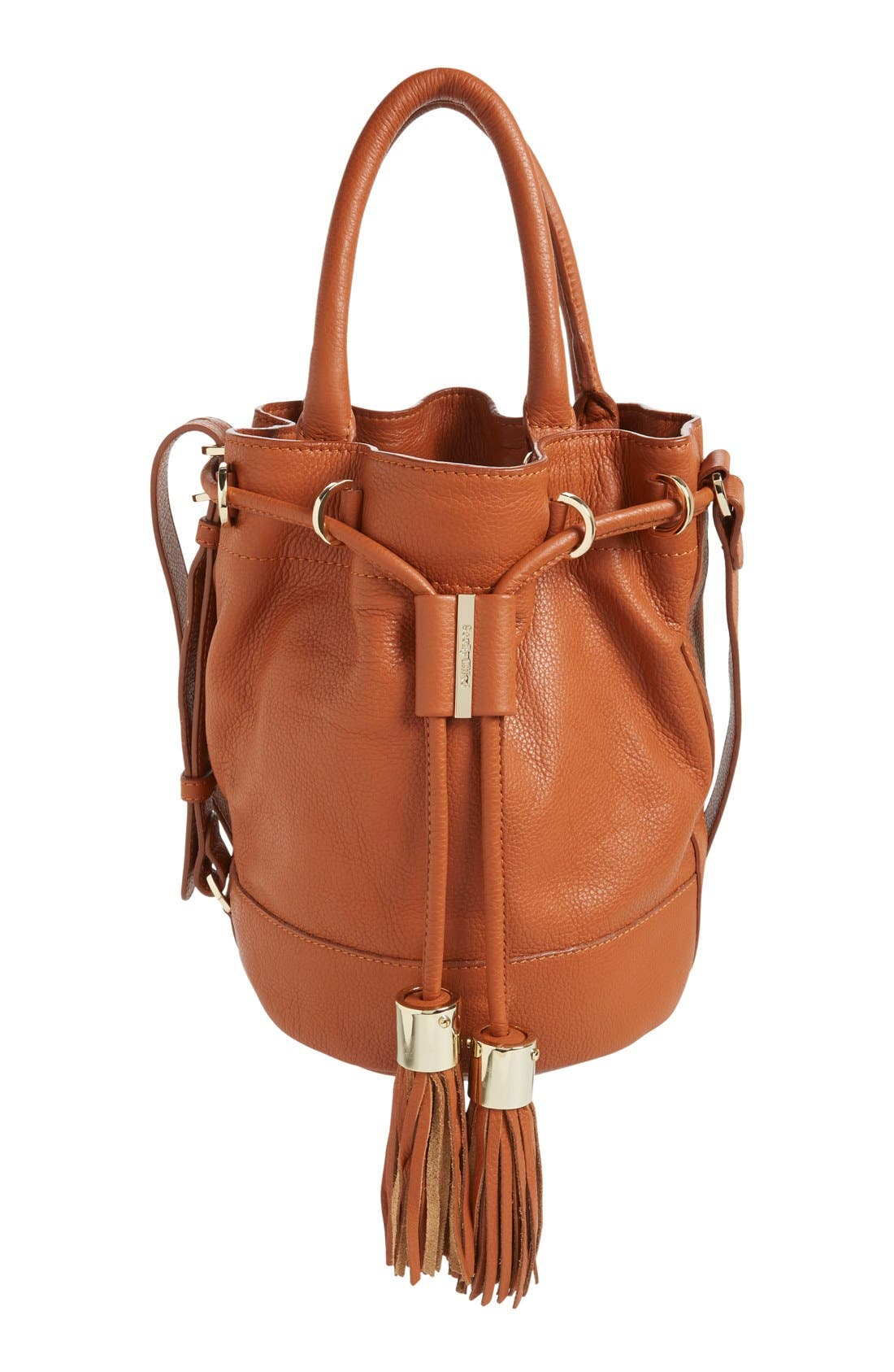 Alternate Image 1 Selected - See by Chloé 'Vicki' Small Leather Bucket Bag