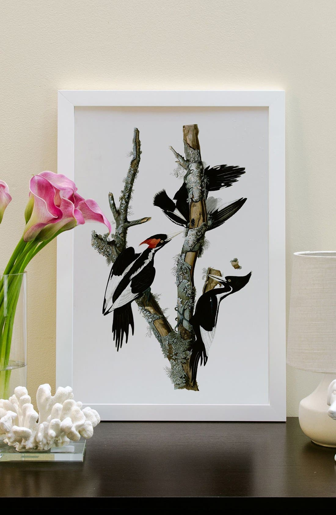 'Ivory Billed Woodpecker' Framed Fine Art Print,                             Alternate thumbnail 2, color,                             White