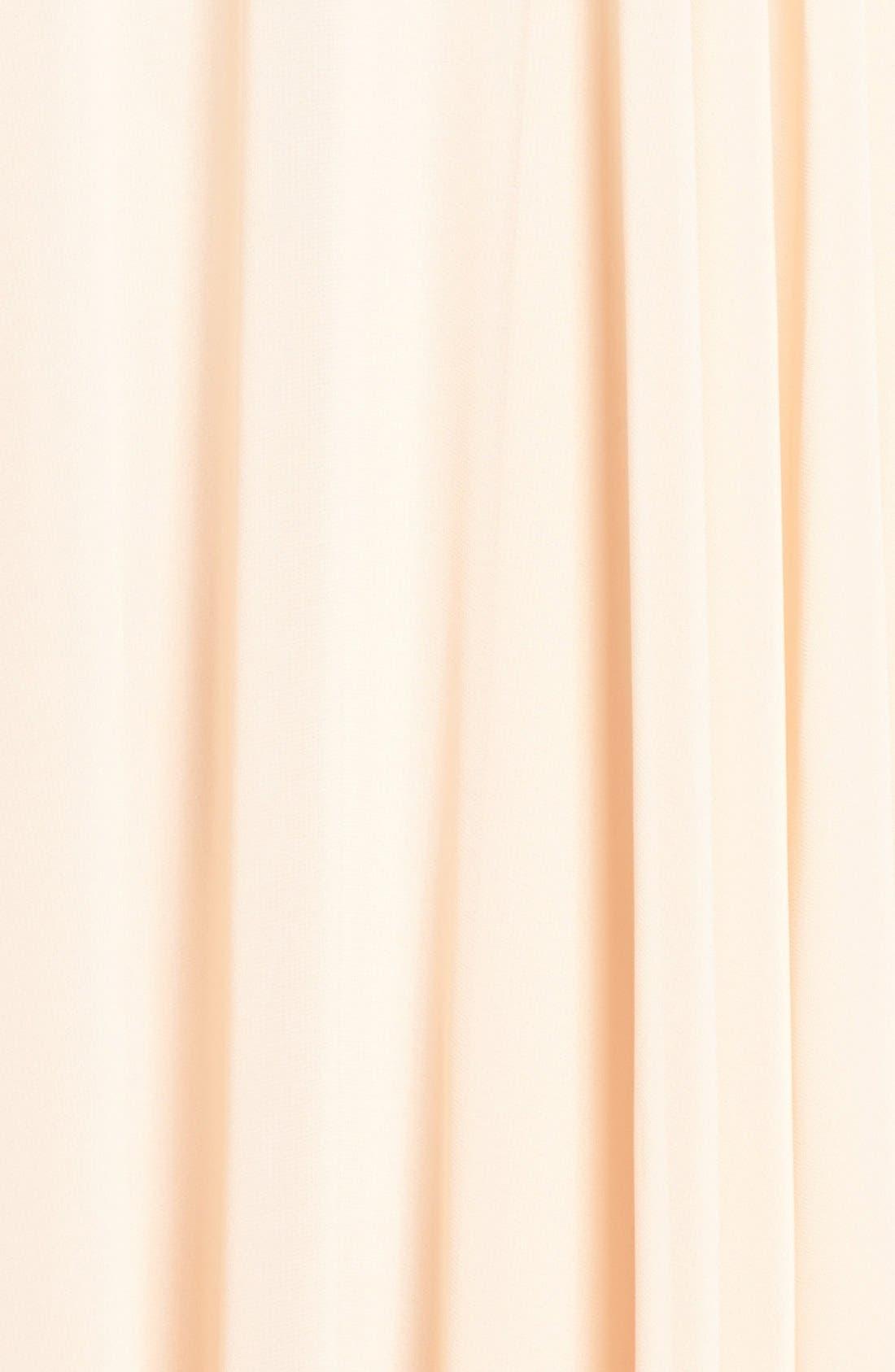 Alternate Image 6  - Jenny Yoo 'Hampton' Long A-Line Chiffon Skirt