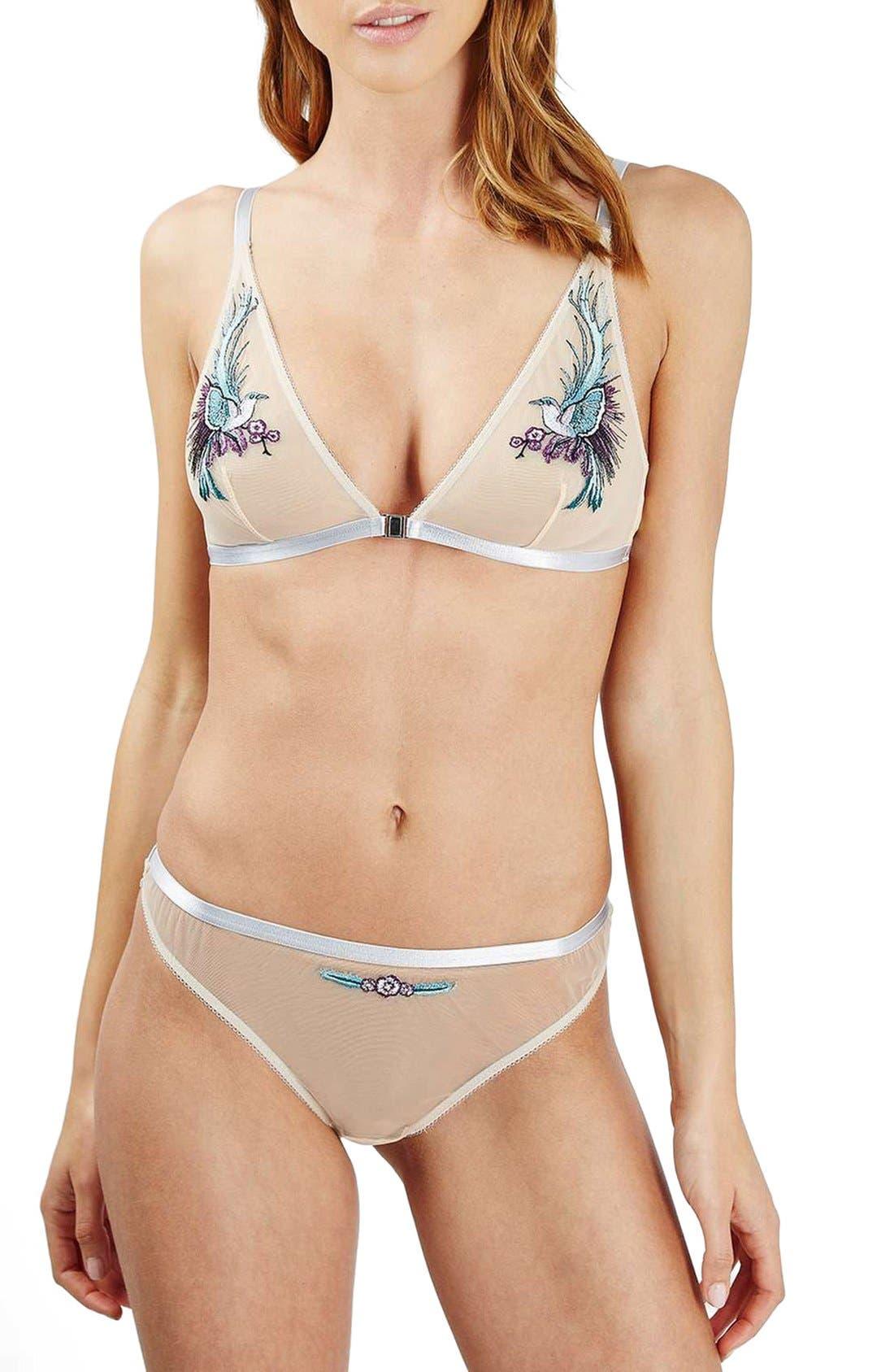 Alternate Image 3  - Topshop Anna Bird Embroidered Triangle Bralette