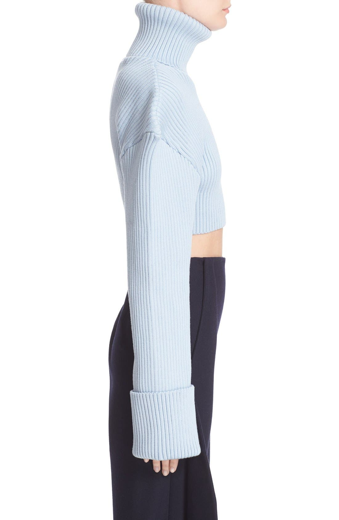 Alternate Image 5  - Jacquemus Cropped Football Shoulder Turtleneck Sweater
