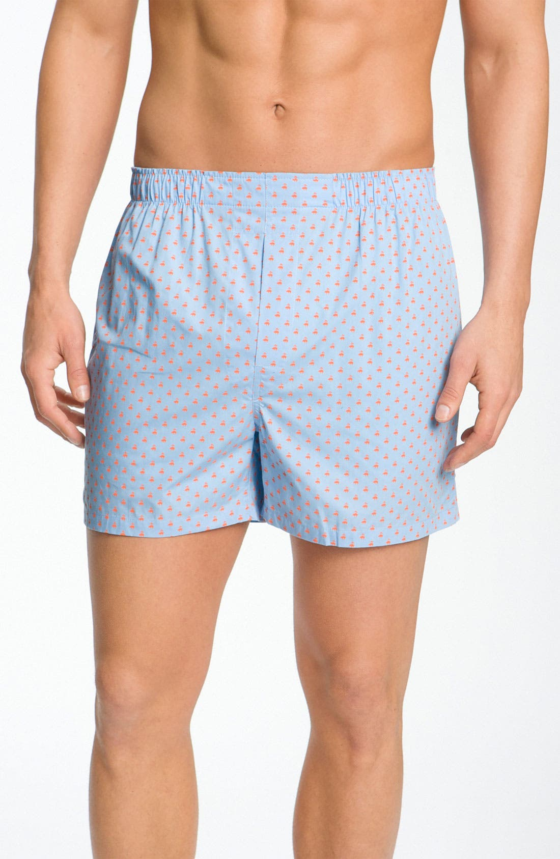 Alternate Image 1 Selected - Brooks Brothers Print Boxers