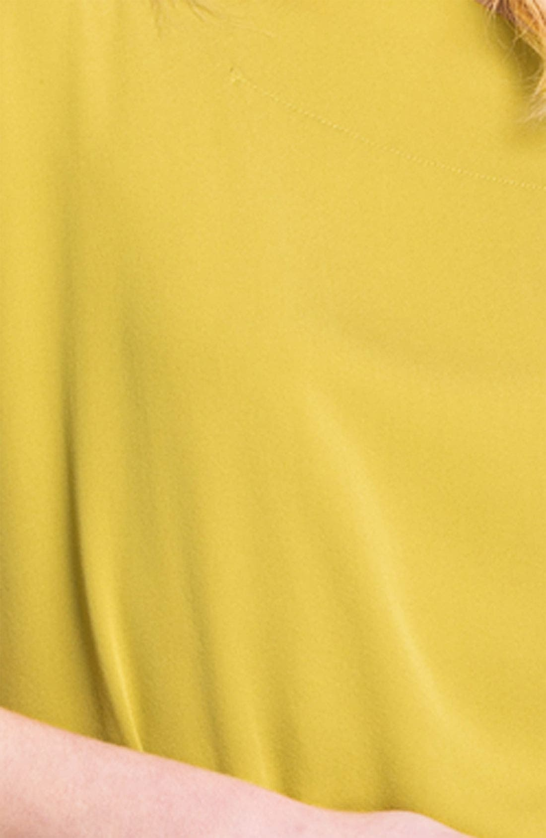 Alternate Image 3  - Diane von Furstenberg 'Goya' Silk Blouse