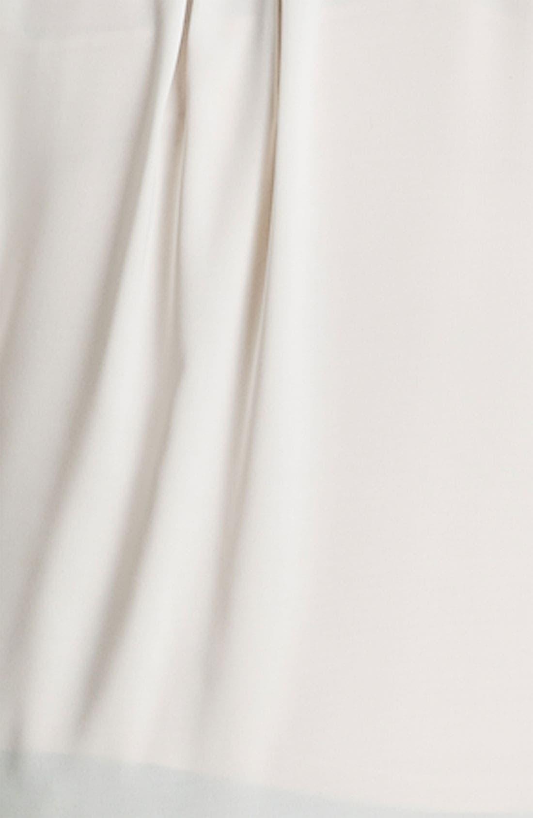 Alternate Image 3  - Sandra Ingrish Pullover Tunic (Plus)