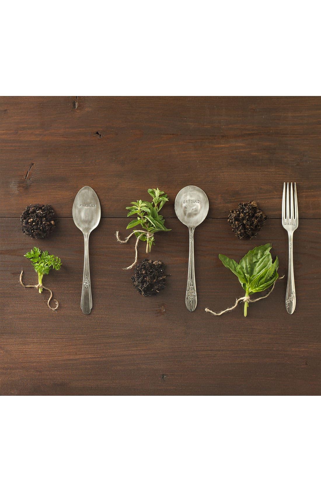 Alternate Image 2  - Oregano Herb Kit & Garden Marker