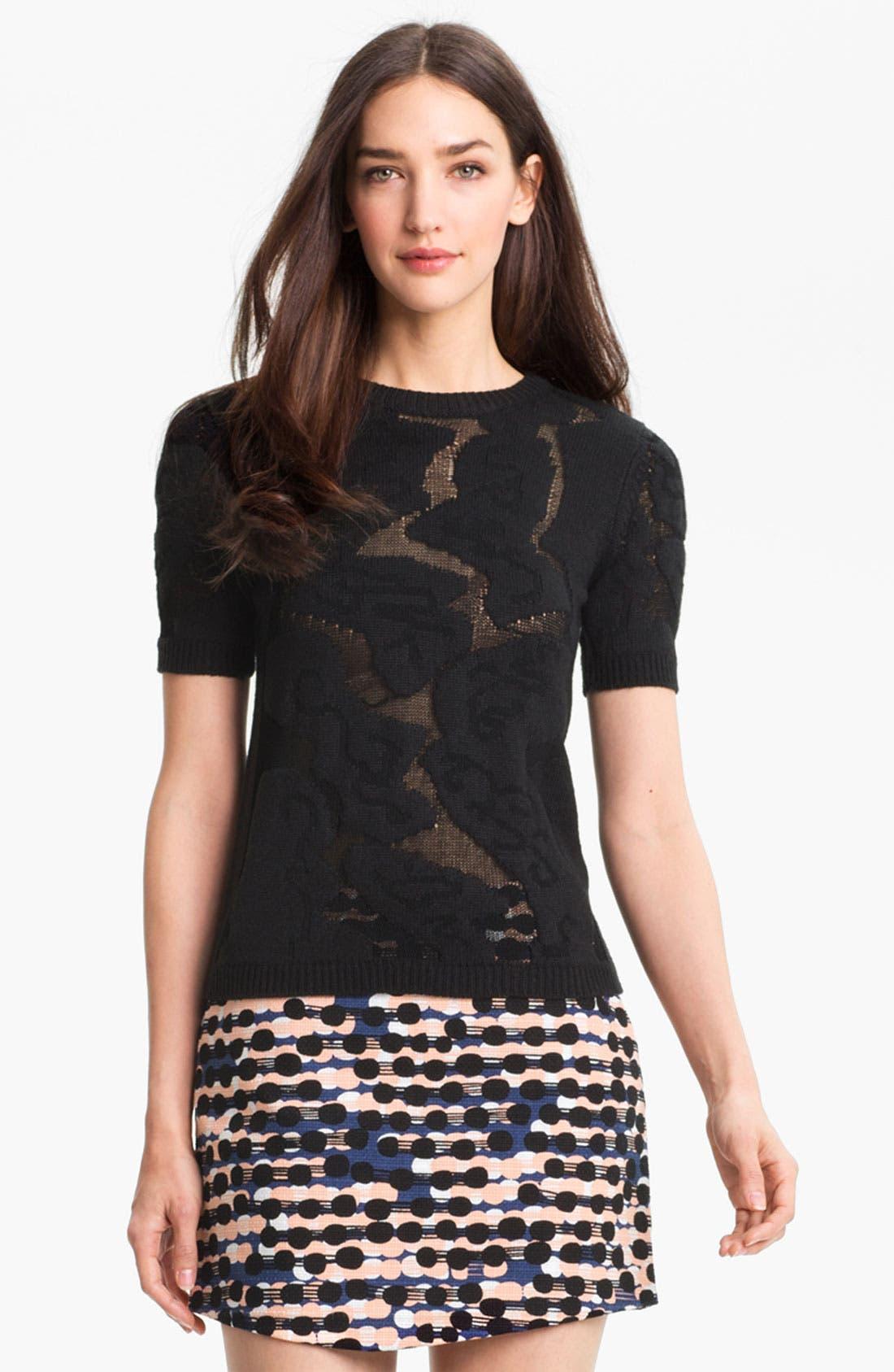 Alternate Image 1 Selected - Diane von Furstenberg 'Addi' Sweater