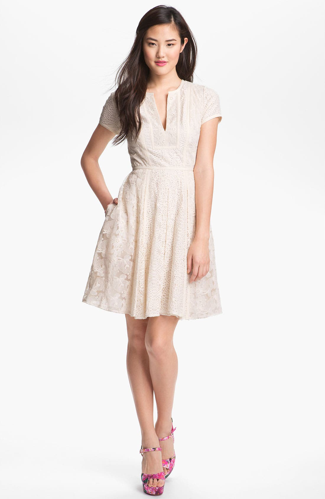Alternate Image 1 Selected - BCBGMAXAZRIA Embroidered Lace Dress
