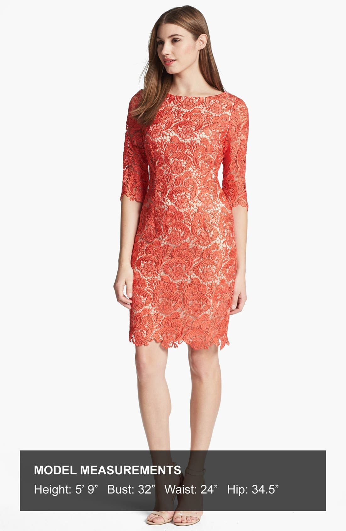 Alternate Image 4  - Eliza J Embroidered Lace Overlay Sheath Dress (Regular & Petite)