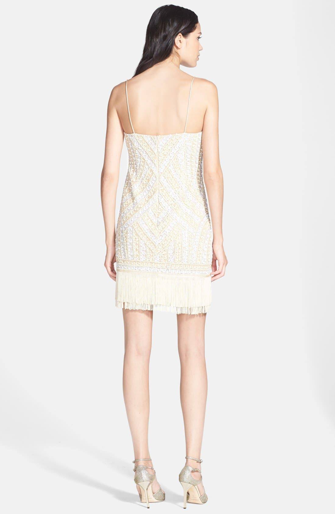 Alternate Image 2  - Aidan Mattox Embellished Fringe Dress