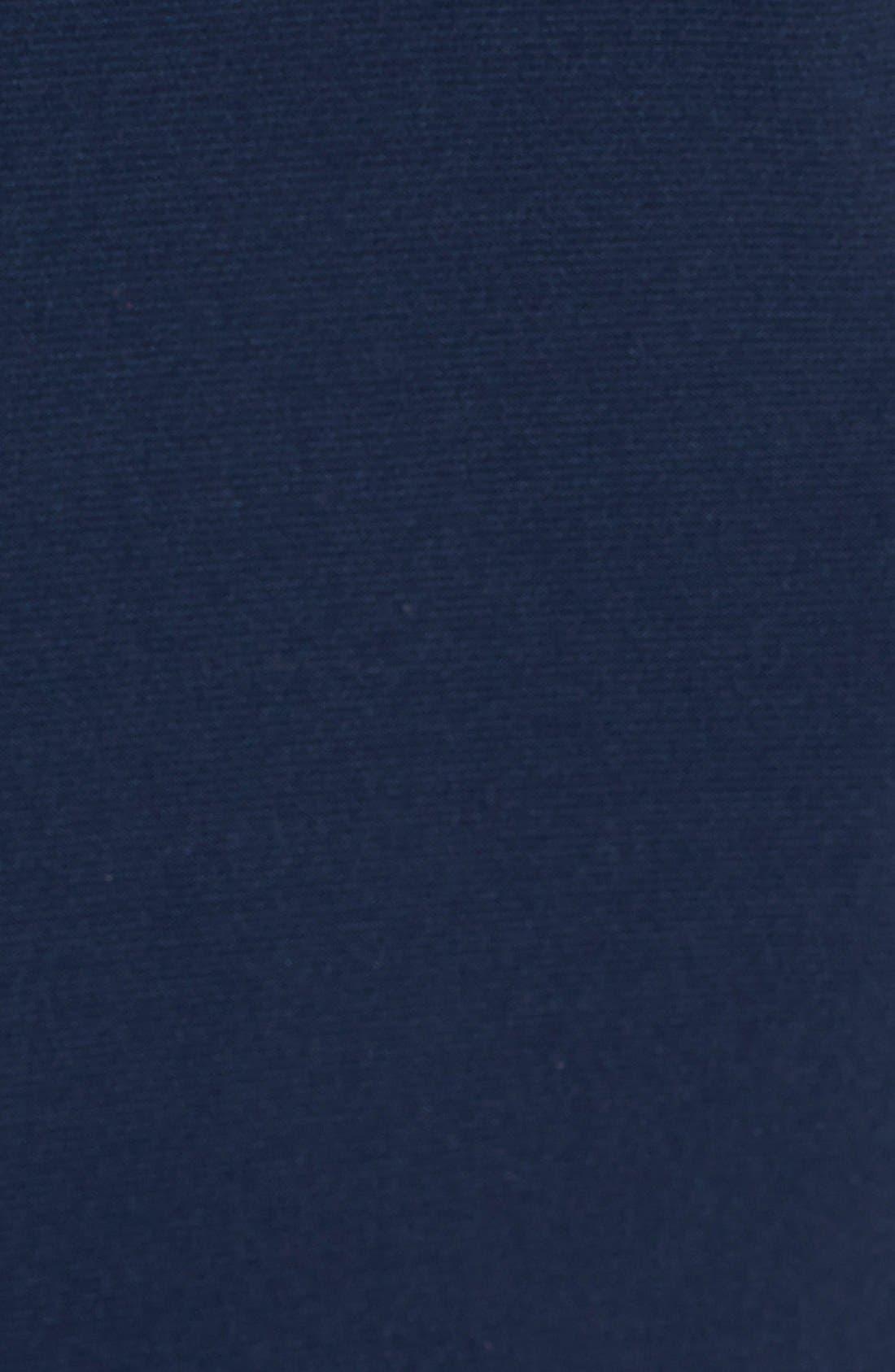 Alternate Image 4  - Adrianna Papell Lace & Jersey Shirred Sheath Dress