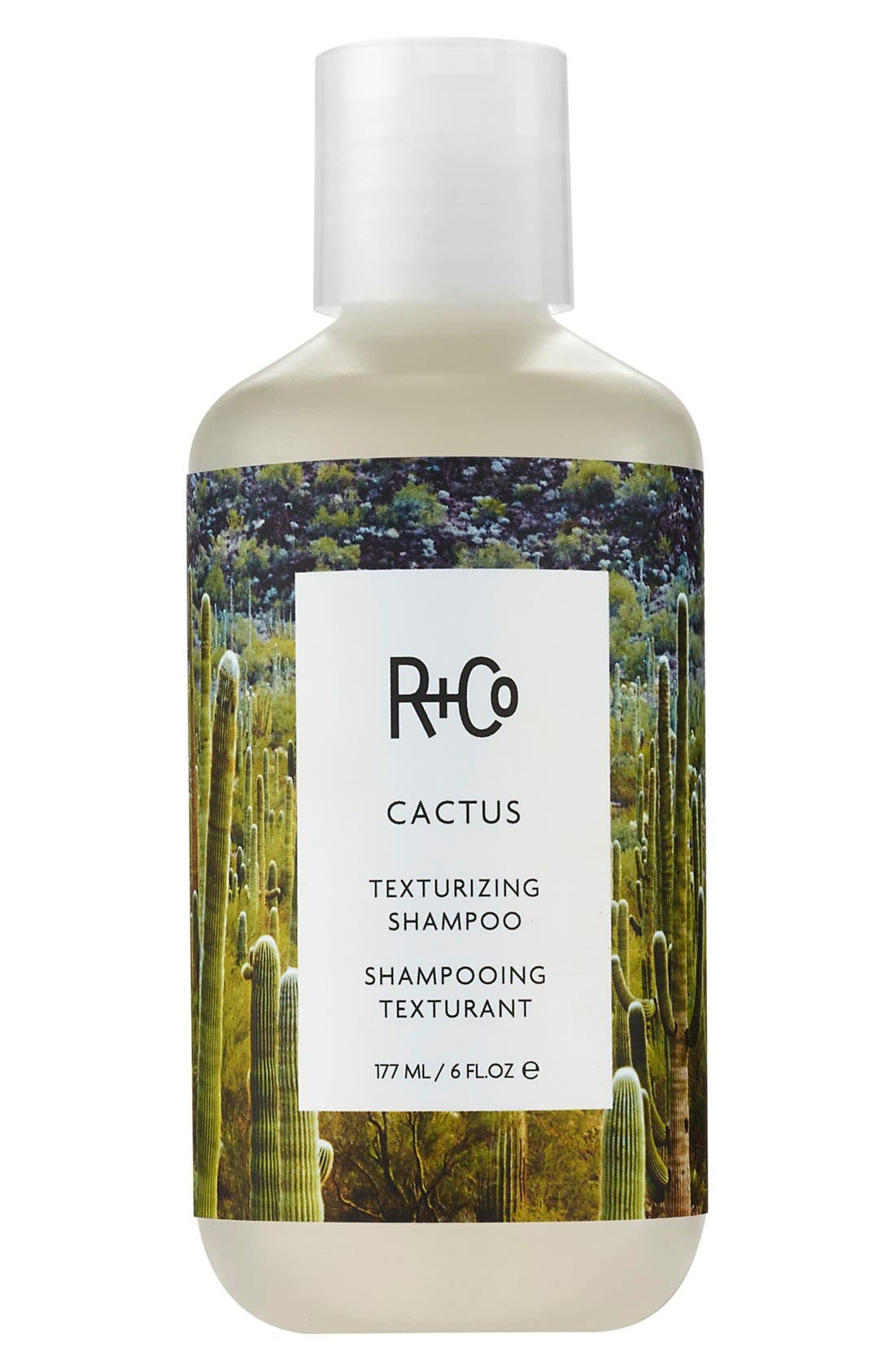 R+CO Space.NK.apothecary R+Co Cactus Texturizing Shampoo, Main, color, NO COLOR