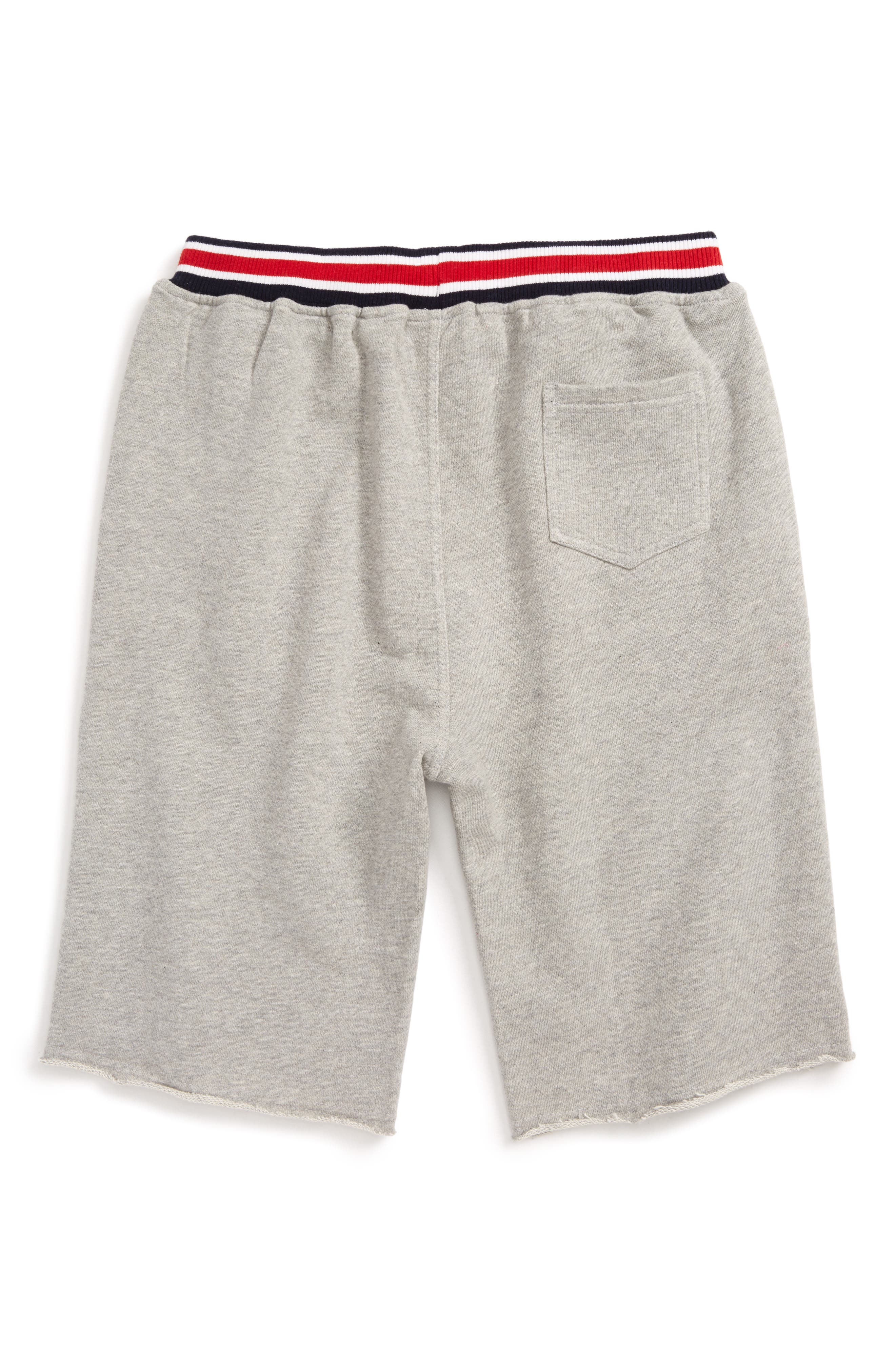Varsity Knit Shorts,                             Alternate thumbnail 2, color,                             020