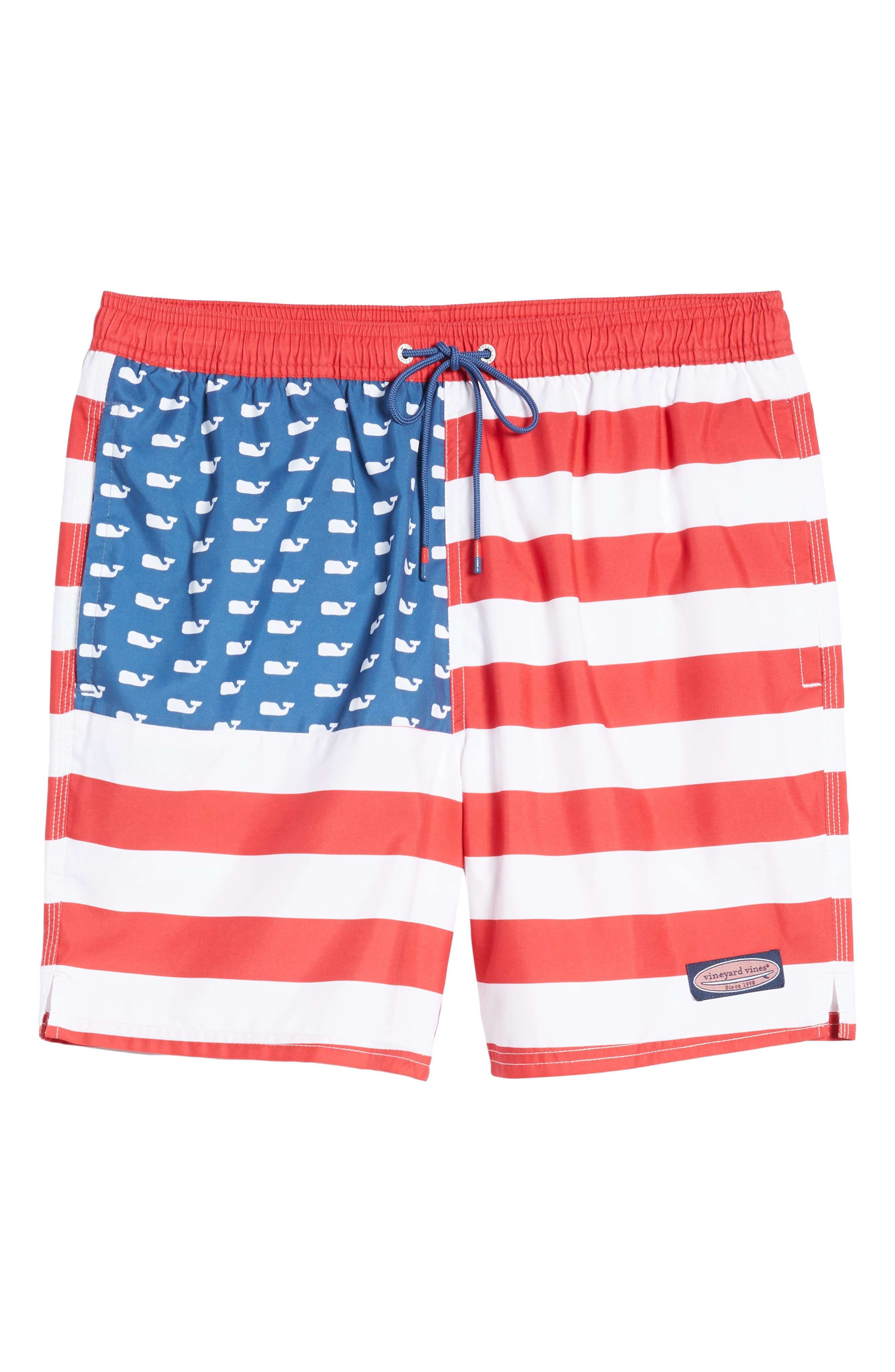 Chappy USA Flag Swim Trunks,                             Alternate thumbnail 6, color,                             461