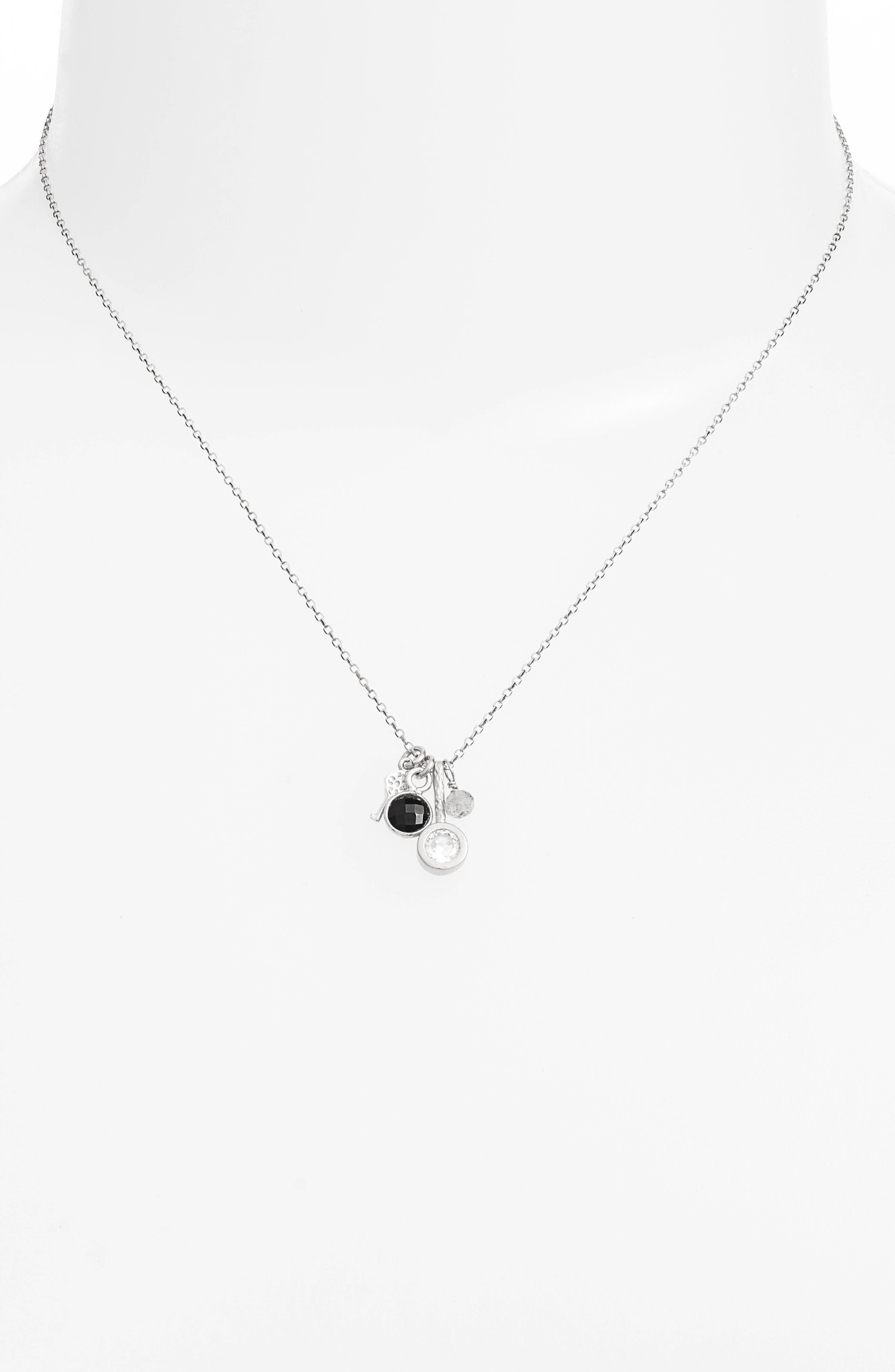 All Good Things Onyx Necklace,                             Alternate thumbnail 2, color,                             SILVER