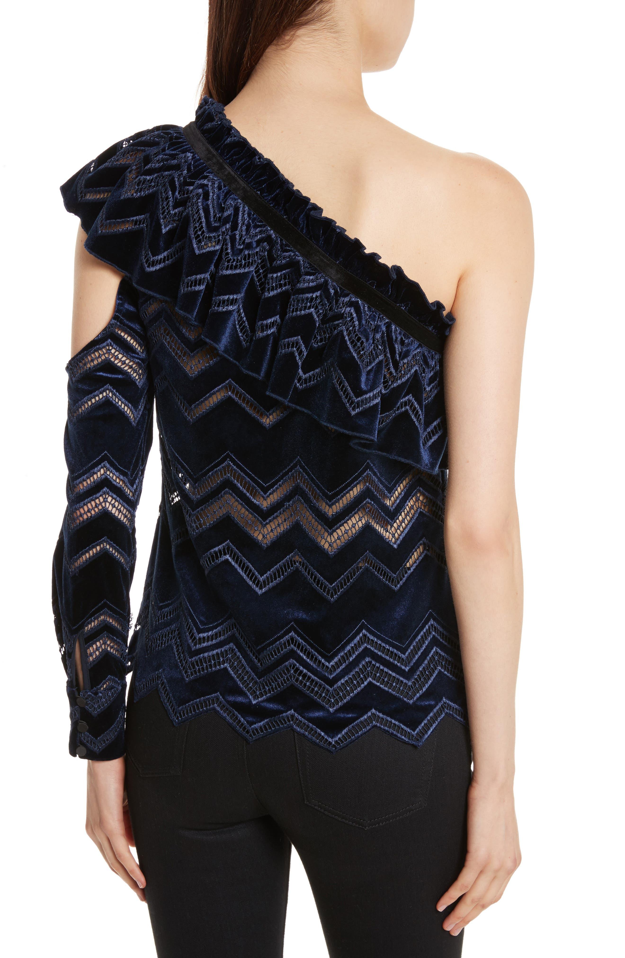 Zigzag Embroidered Velvet Top,                             Alternate thumbnail 2, color,                             400
