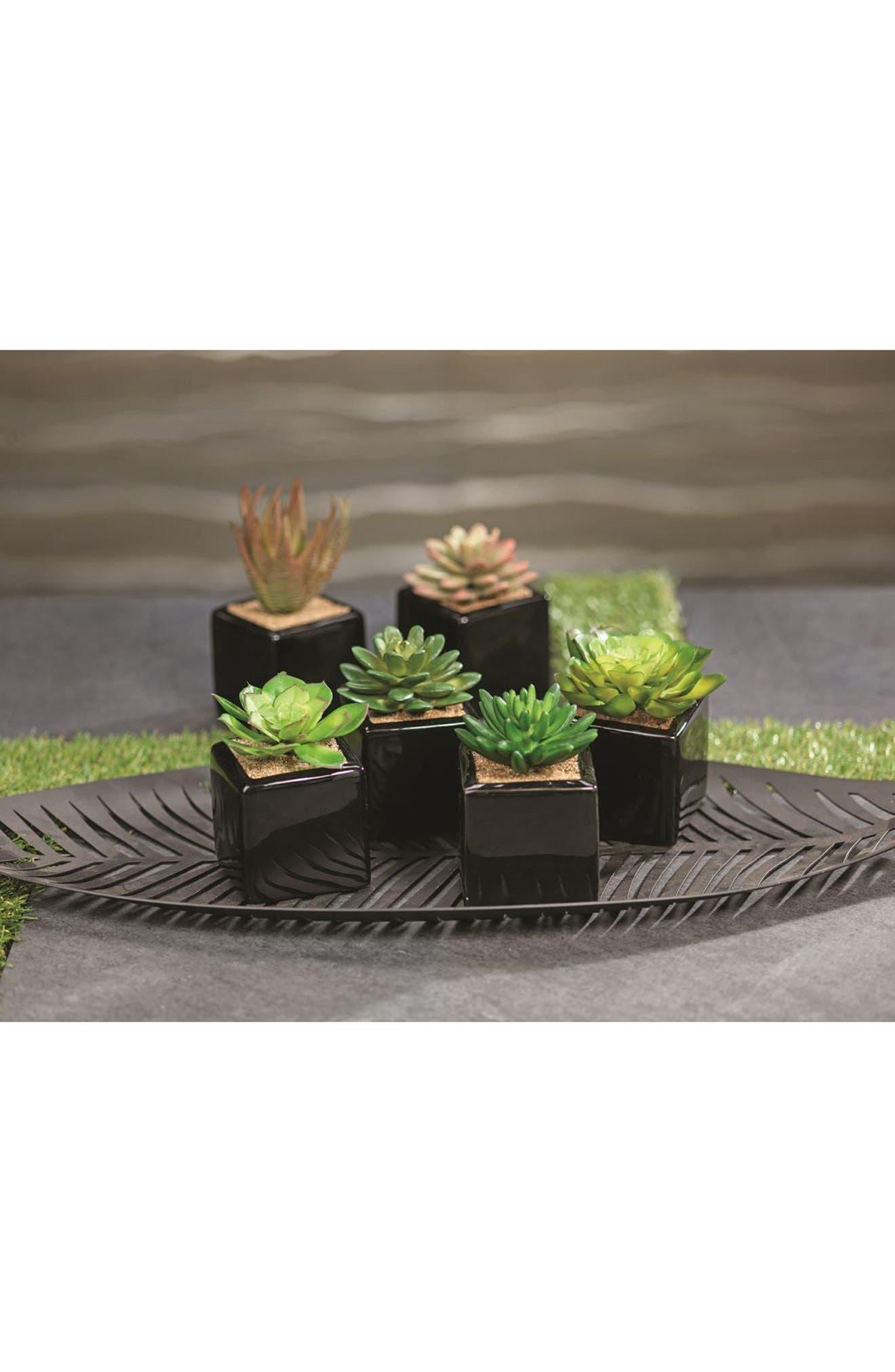 Set of 6 Faux Succulent Planters,                             Alternate thumbnail 2, color,                             001