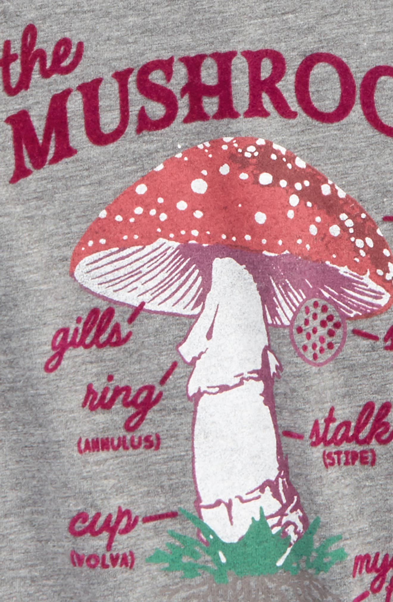 Anatomy of a Mushroom Graphic Tee,                             Alternate thumbnail 2, color,