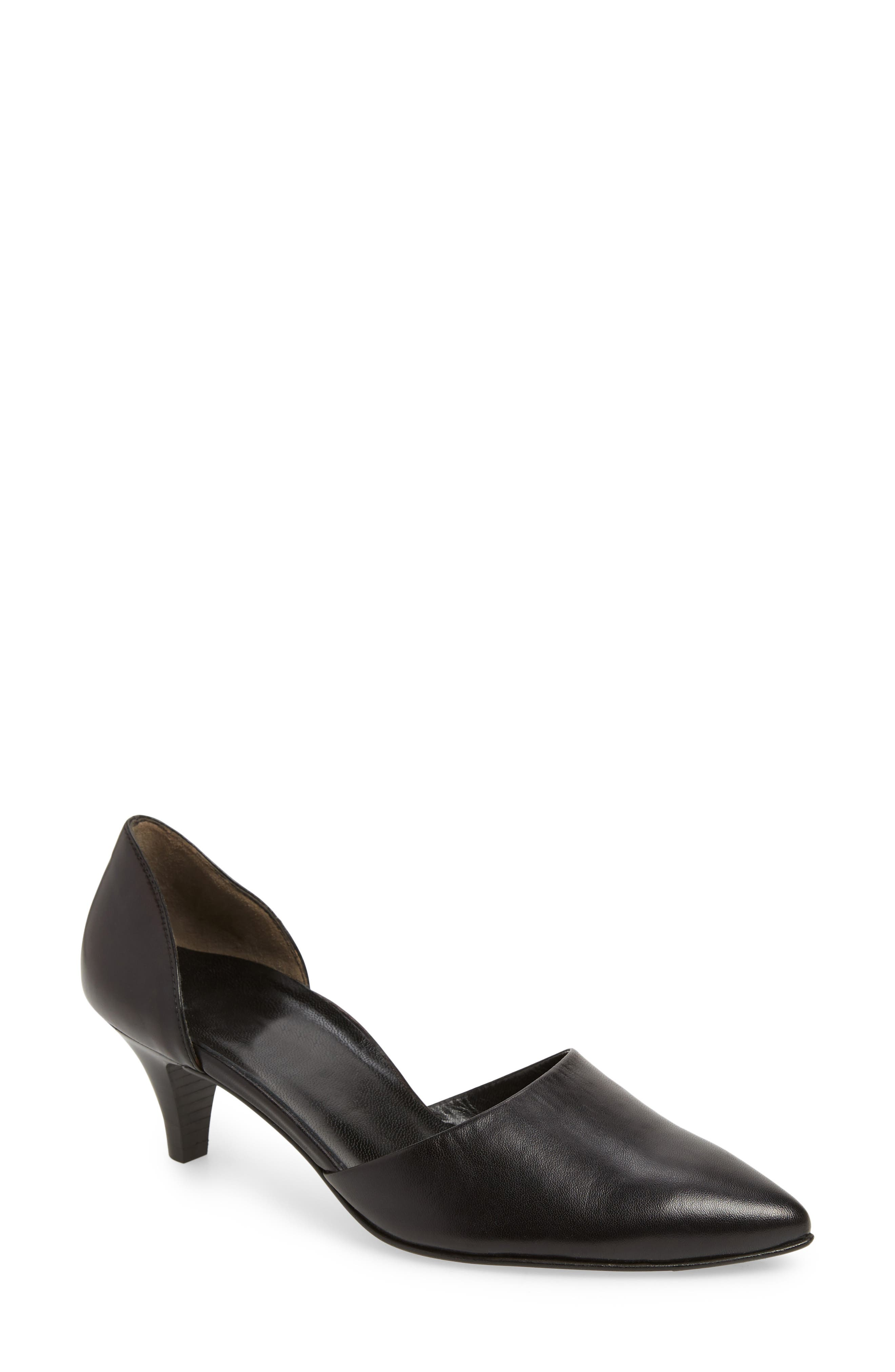Shey Pointy Toe Pump,                             Main thumbnail 1, color,                             BLACK LEATHER