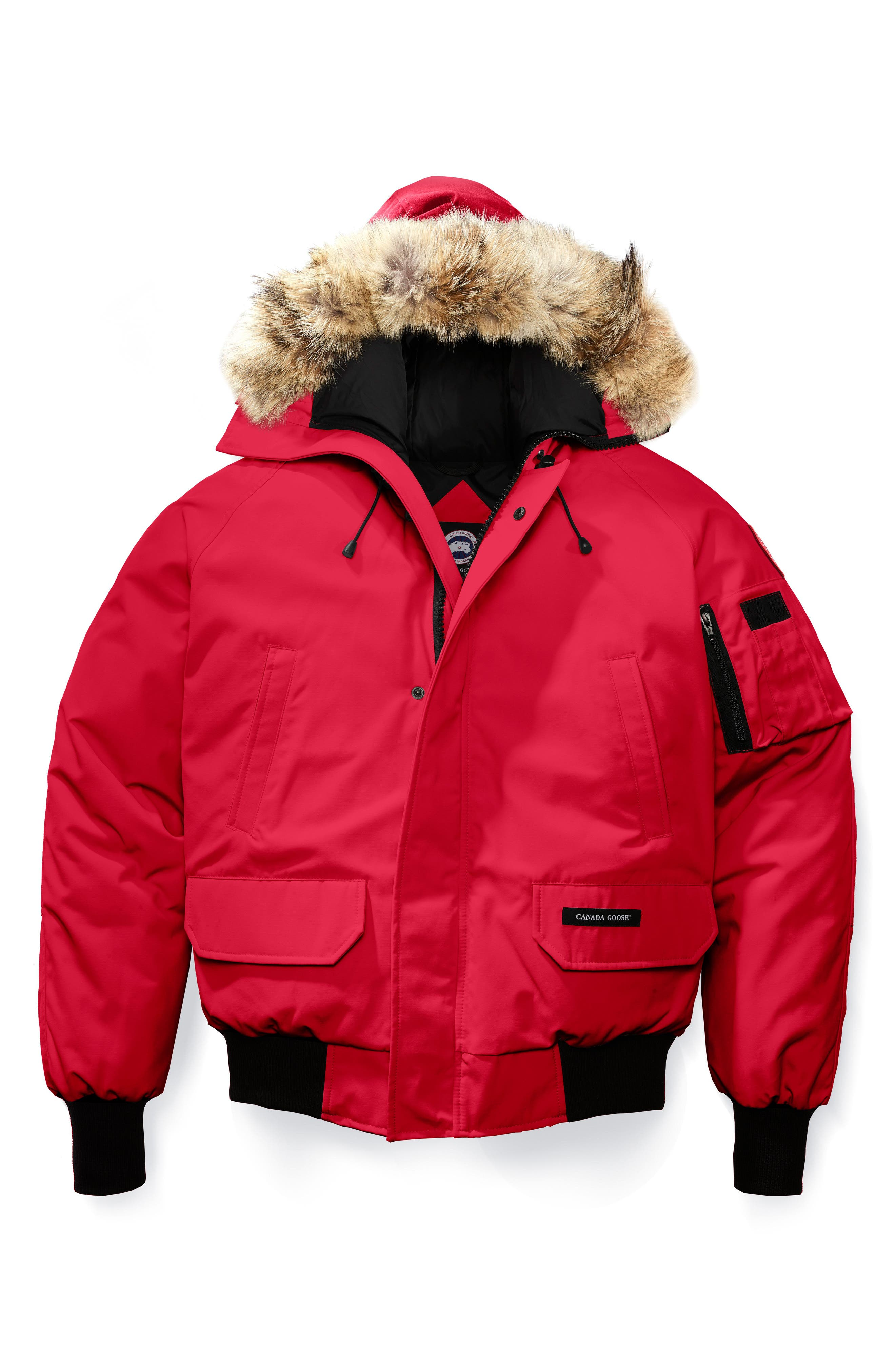 PBI Chilliwack Regular Fit Down Bomber Jacket with Genuine Coyote Trim,                             Alternate thumbnail 4, color,                             RED